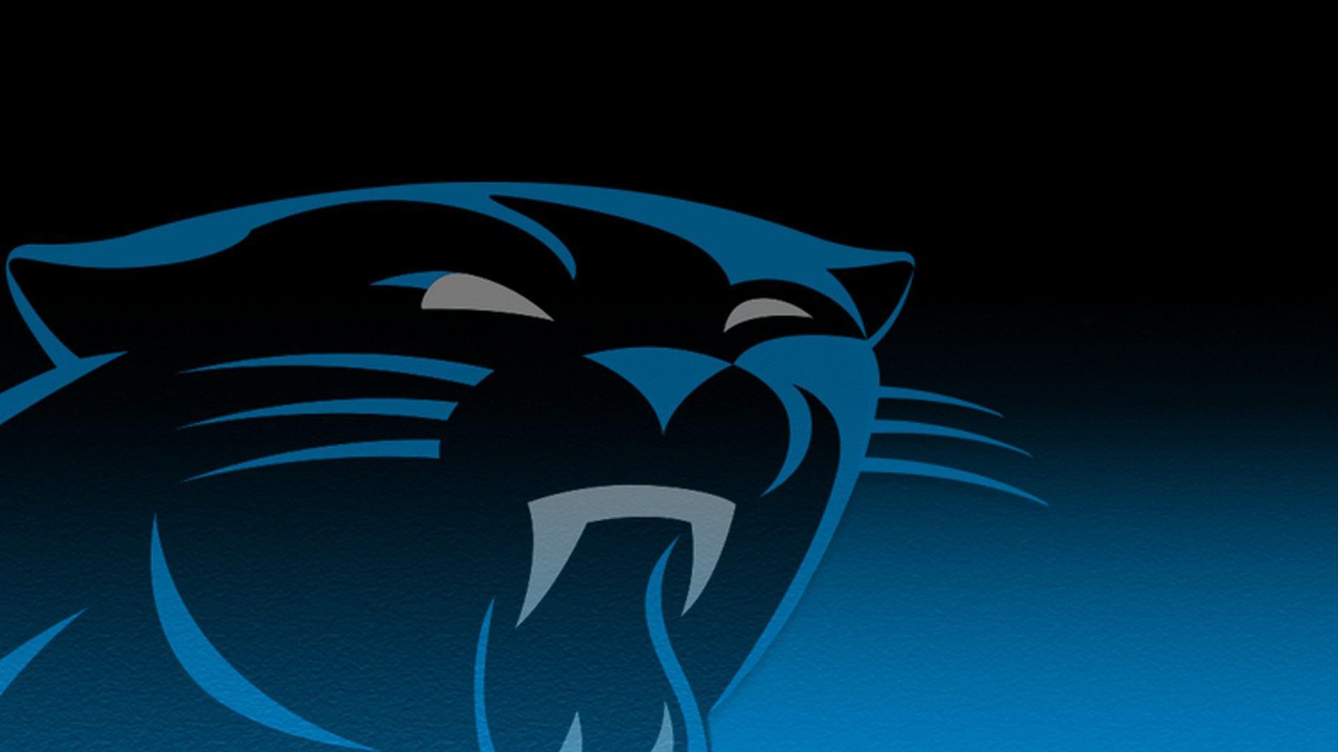 Carolina Panthers Wallpapers - Top Free Carolina Panthers ...