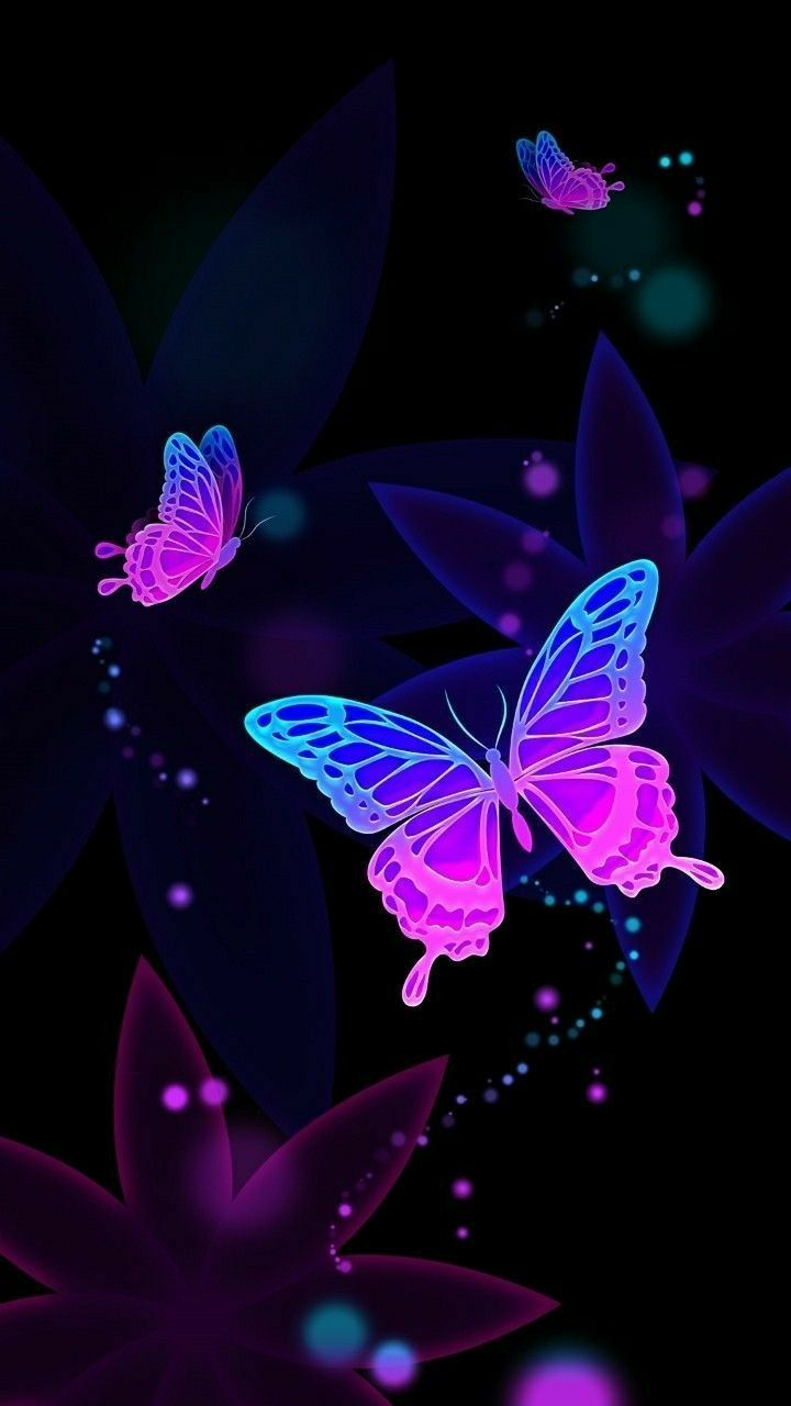Cute Butterfly Wallpapers Top Free Cute Butterfly Backgrounds Wallpaperaccess