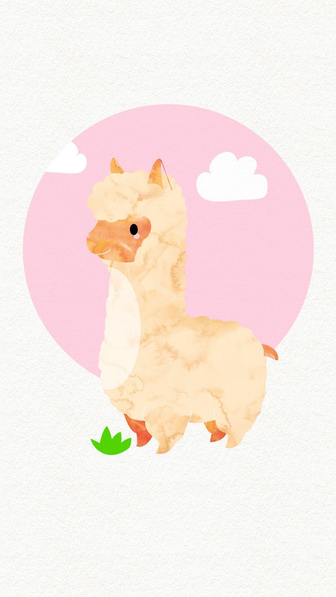 Llama Iphone Wallpapers Top Free Llama Iphone Backgrounds