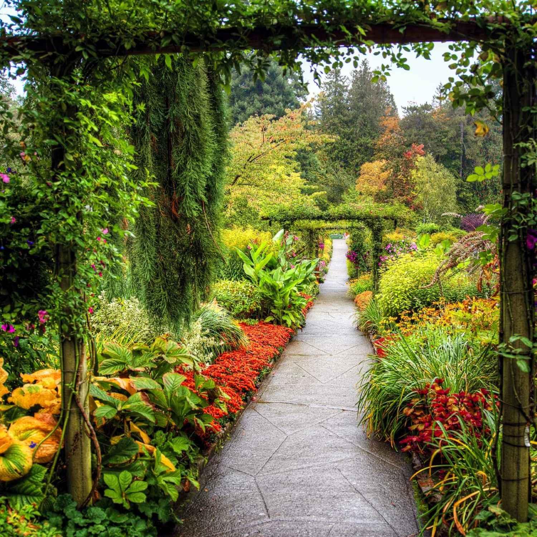 Top Free Garden Backgrounds