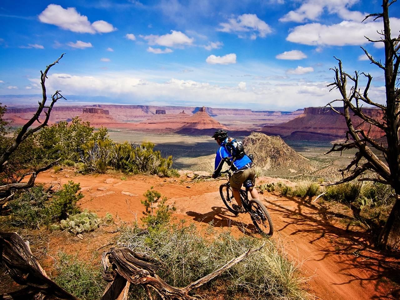 52 Best Free Mountain Bike Desktop Wallpapers Wallpaperaccess