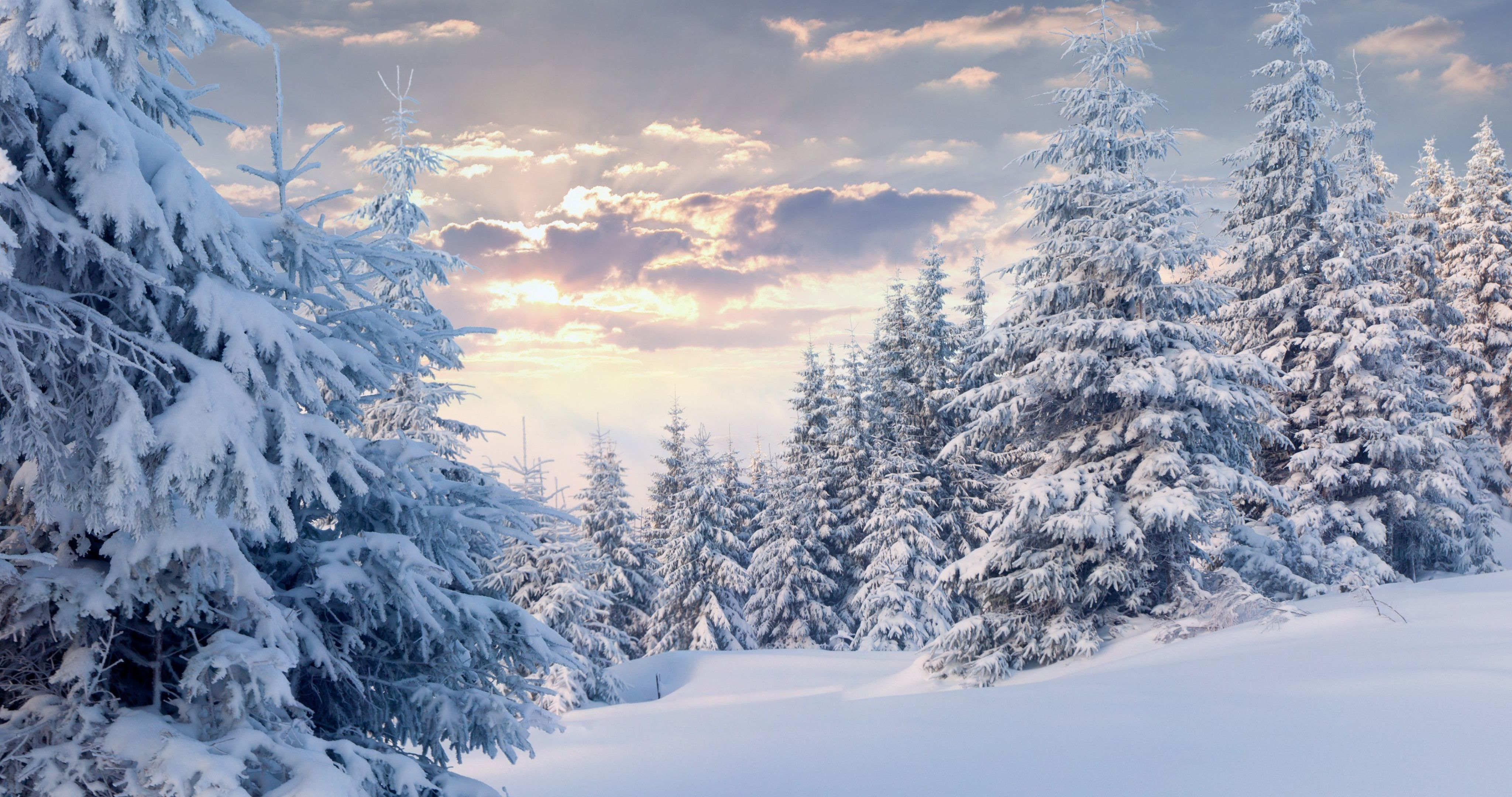 4k Snow Wallpapers Top Free 4k Snow Backgrounds Wallpaperaccess