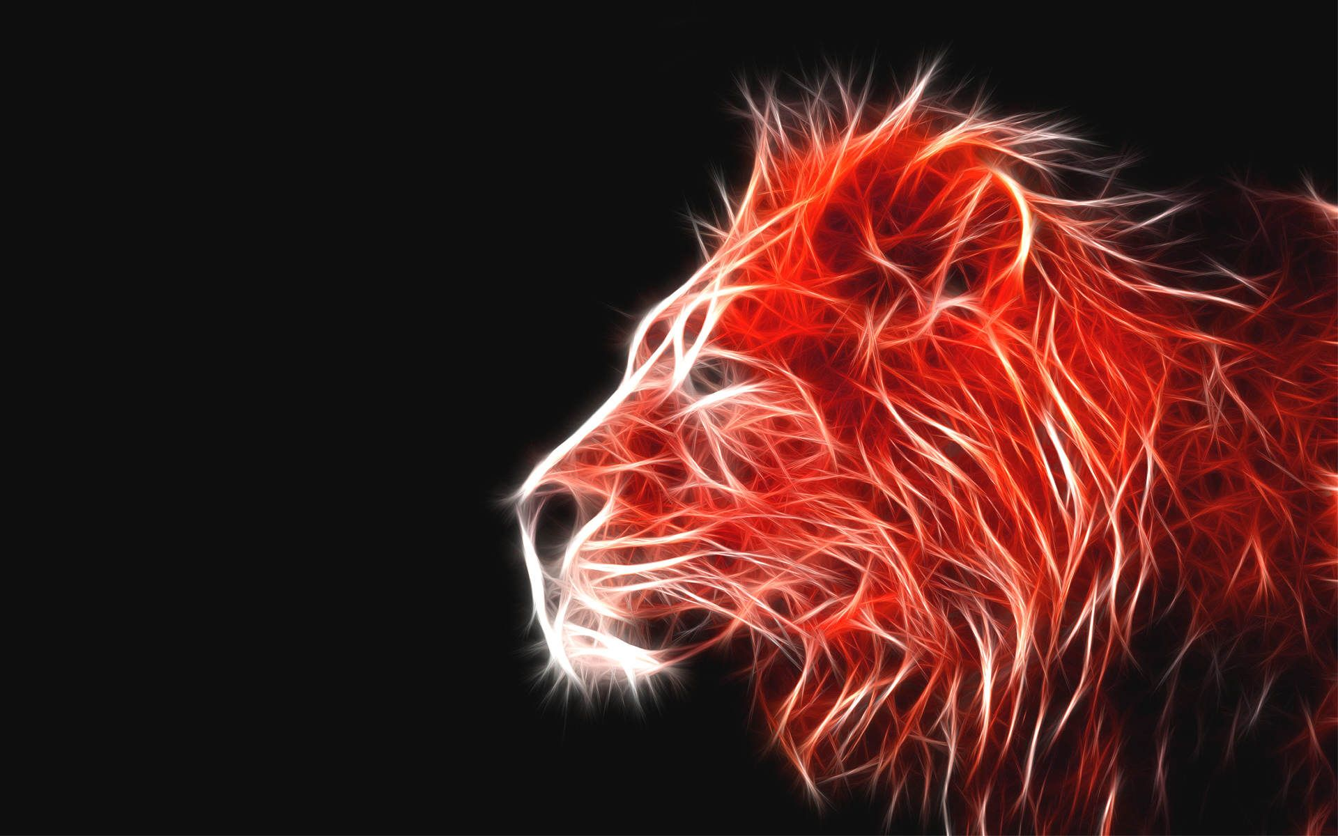 Red Lion Wallpapers Top Free Red Lion Backgrounds Wallpaperaccess