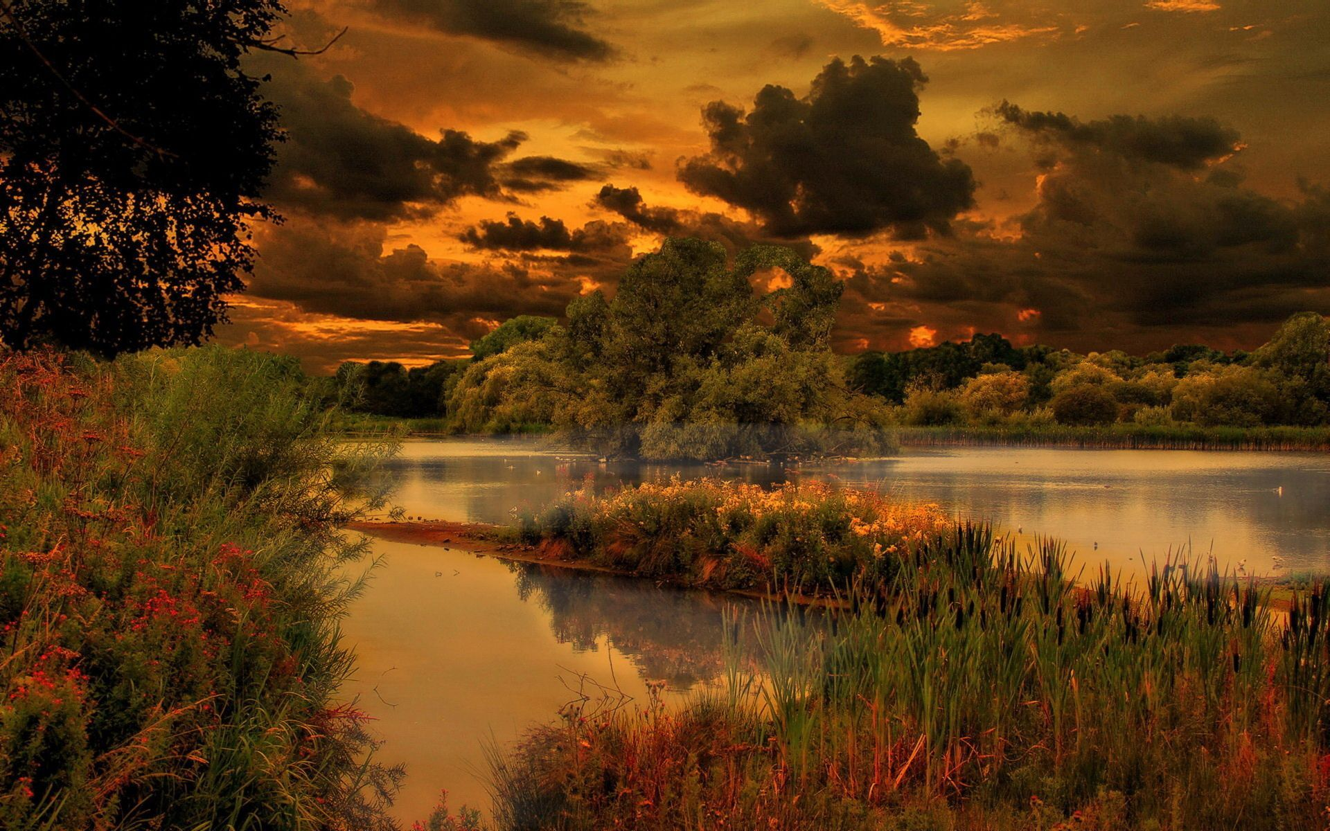 Amazing Nature Wallpapers Top Free Amazing Nature