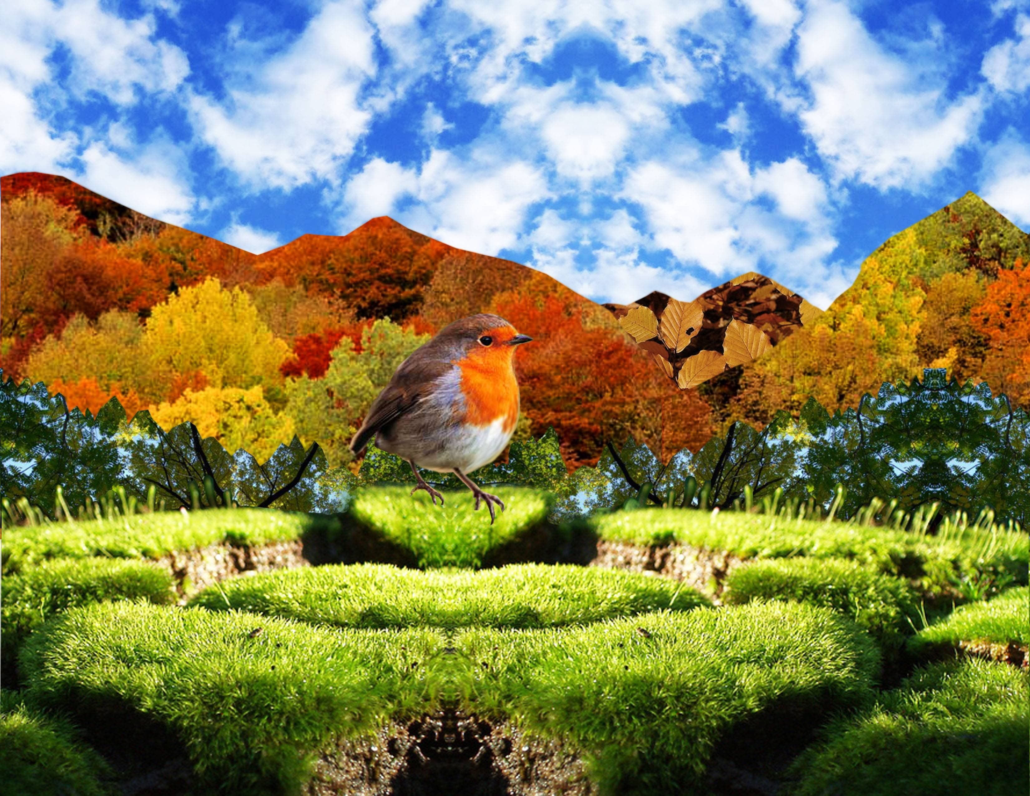 Amazing Nature Wallpapers - Top Free Amazing Nature Backgrounds