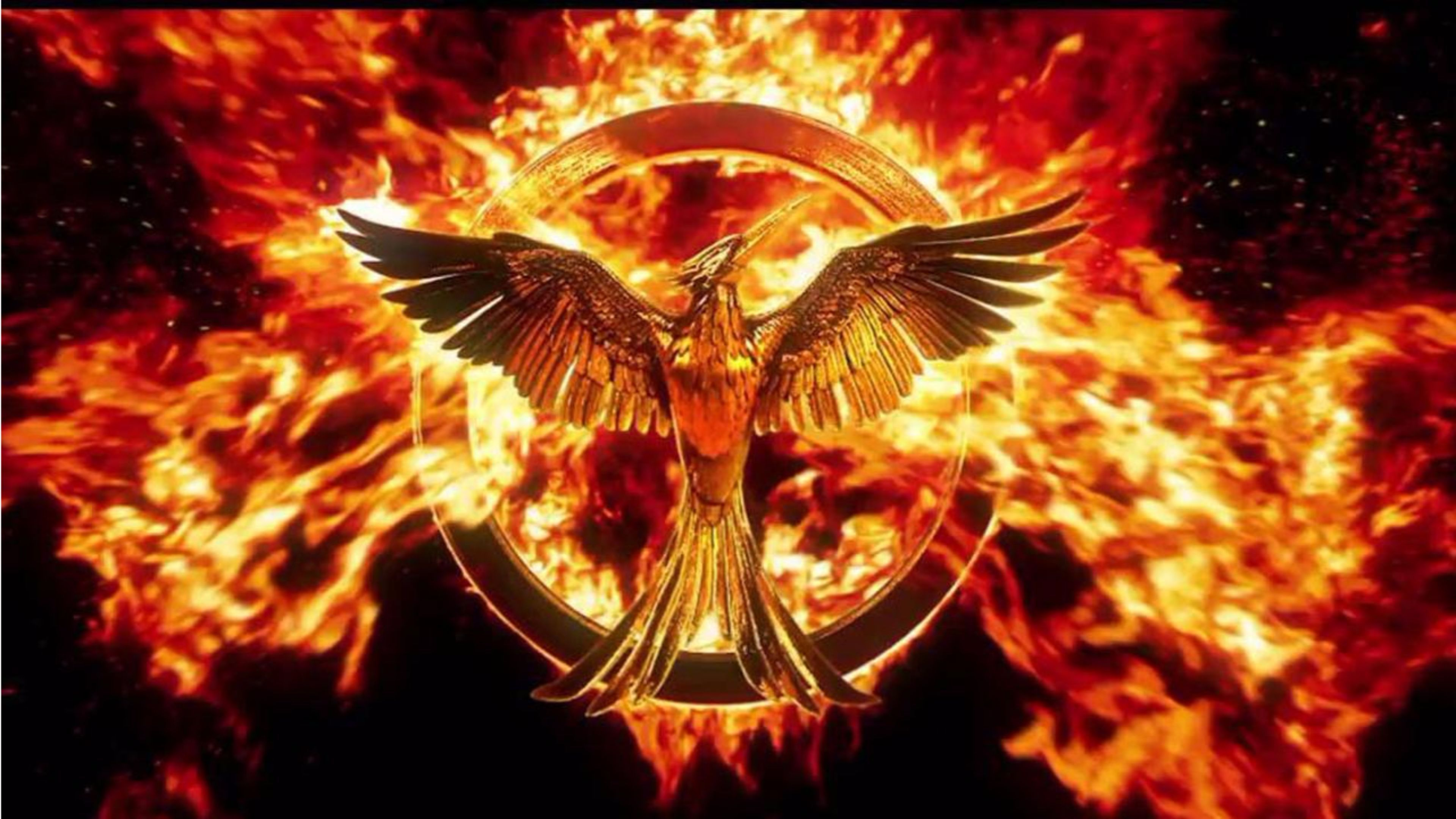 The Hunger Games Wallpapers Top Free The Hunger Games