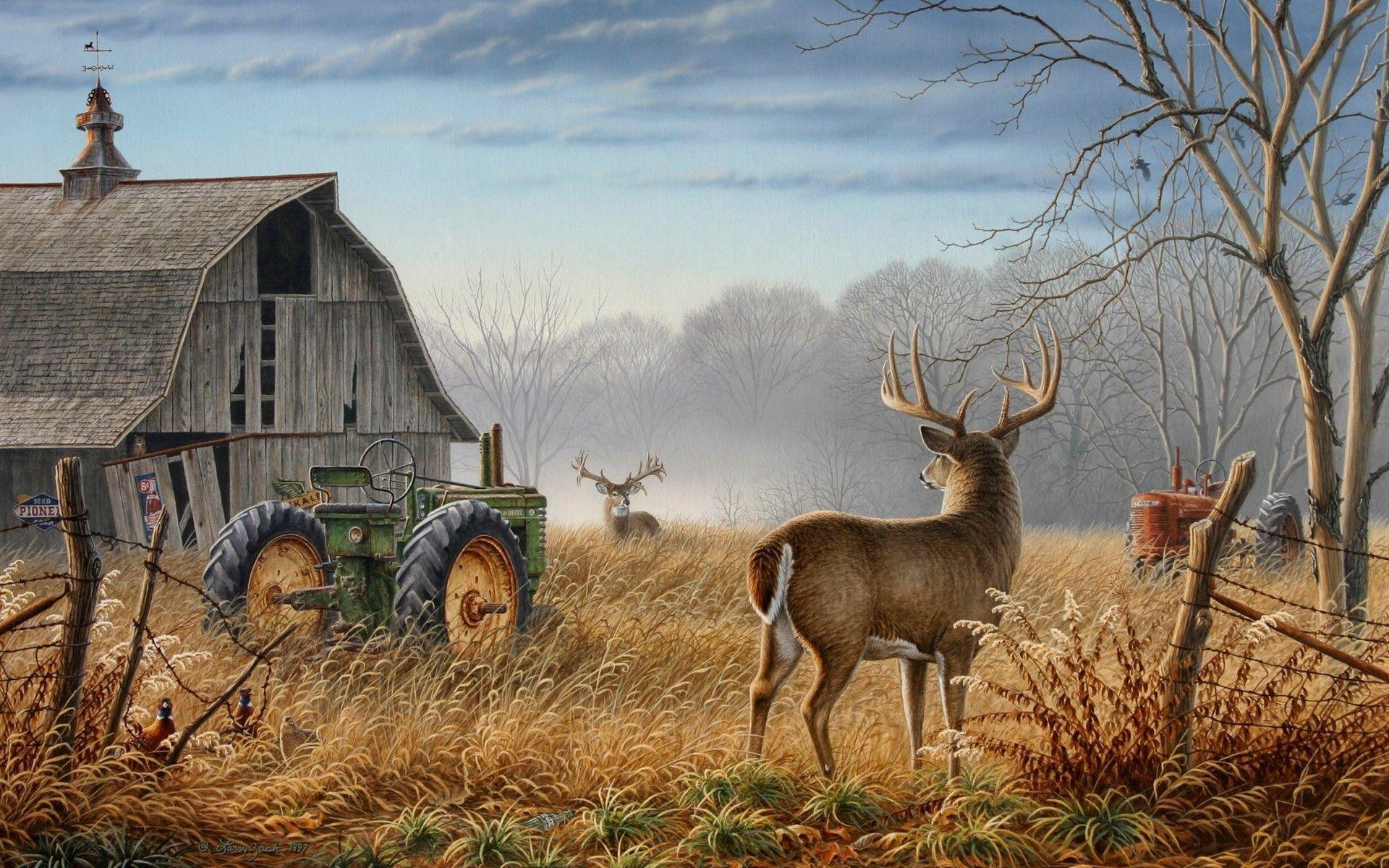 Deer Hunting Wallpapers - Top Free Deer