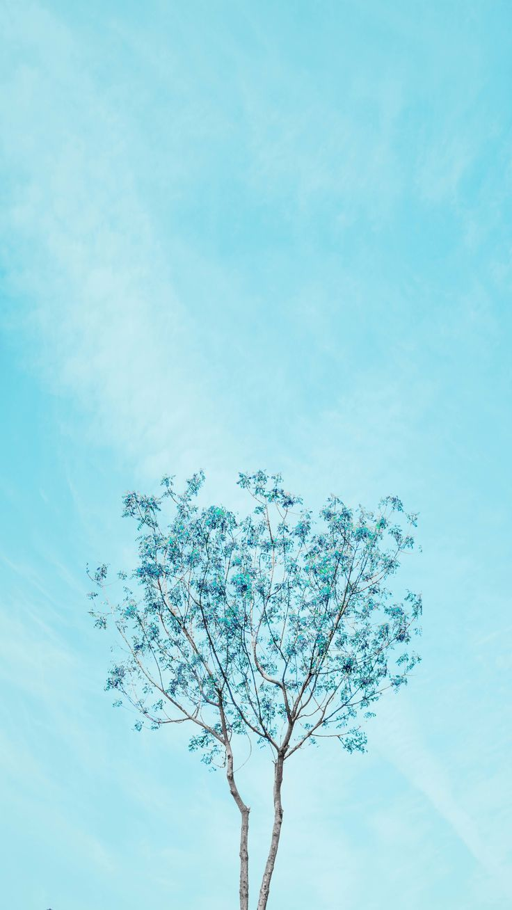 Download 700+ Background Blue Aesthetic HD Paling Keren