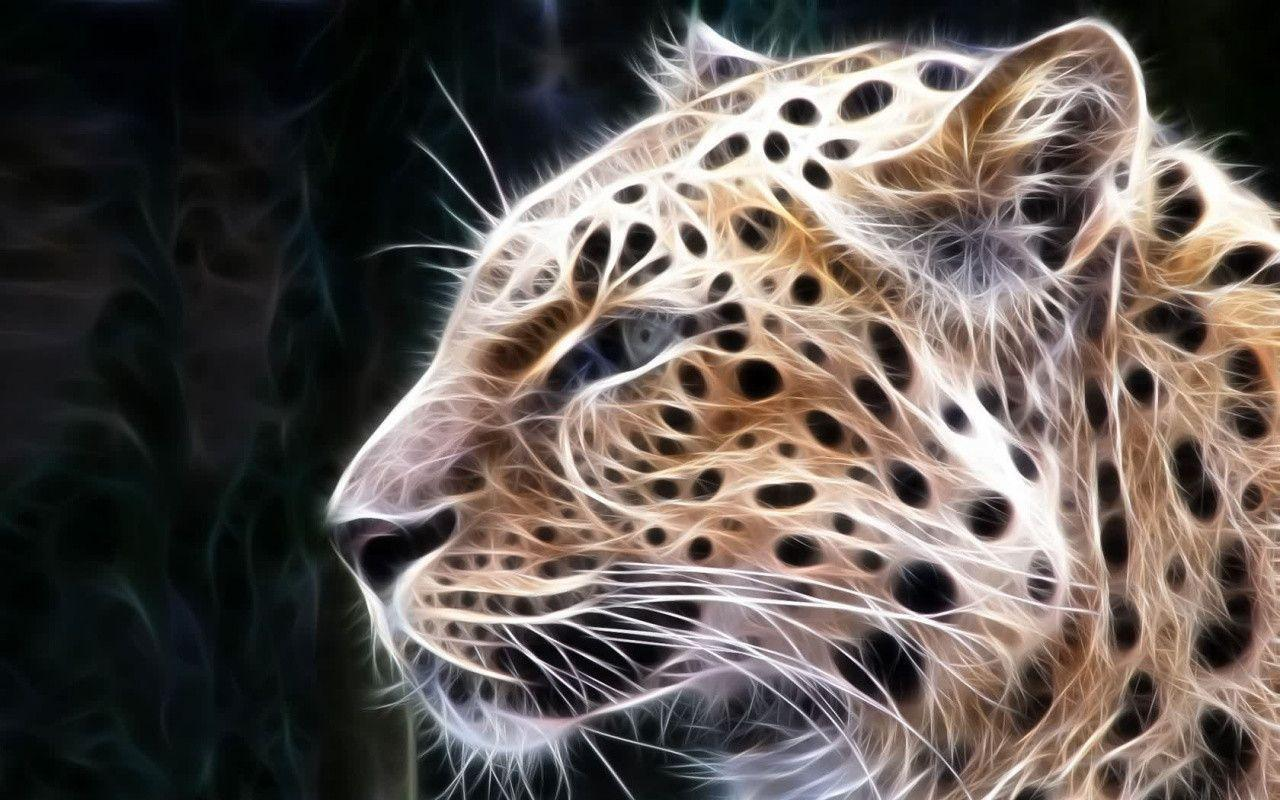 Big Cats Wallpapers Top Free Big Cats Backgrounds Wallpaperaccess