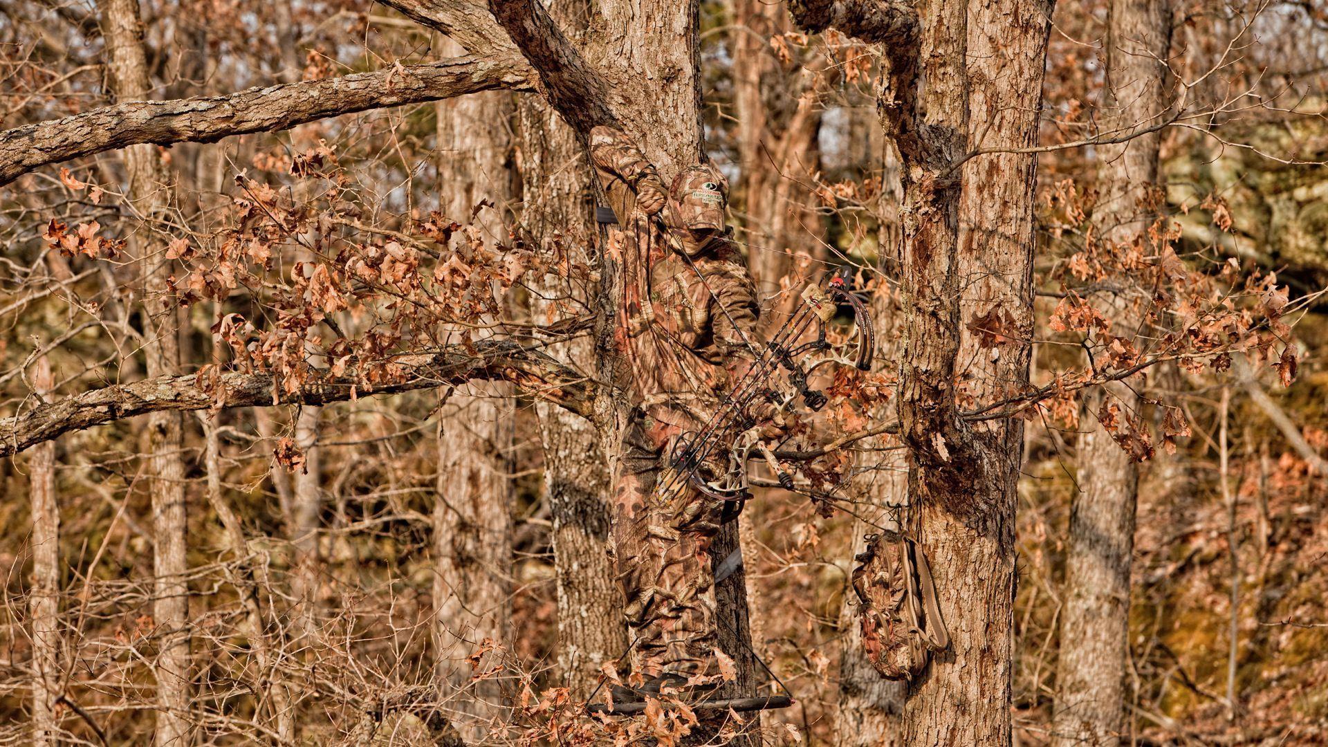 Duck Blind Camo Wallpapers Top Free Duck Blind Camo Backgrounds