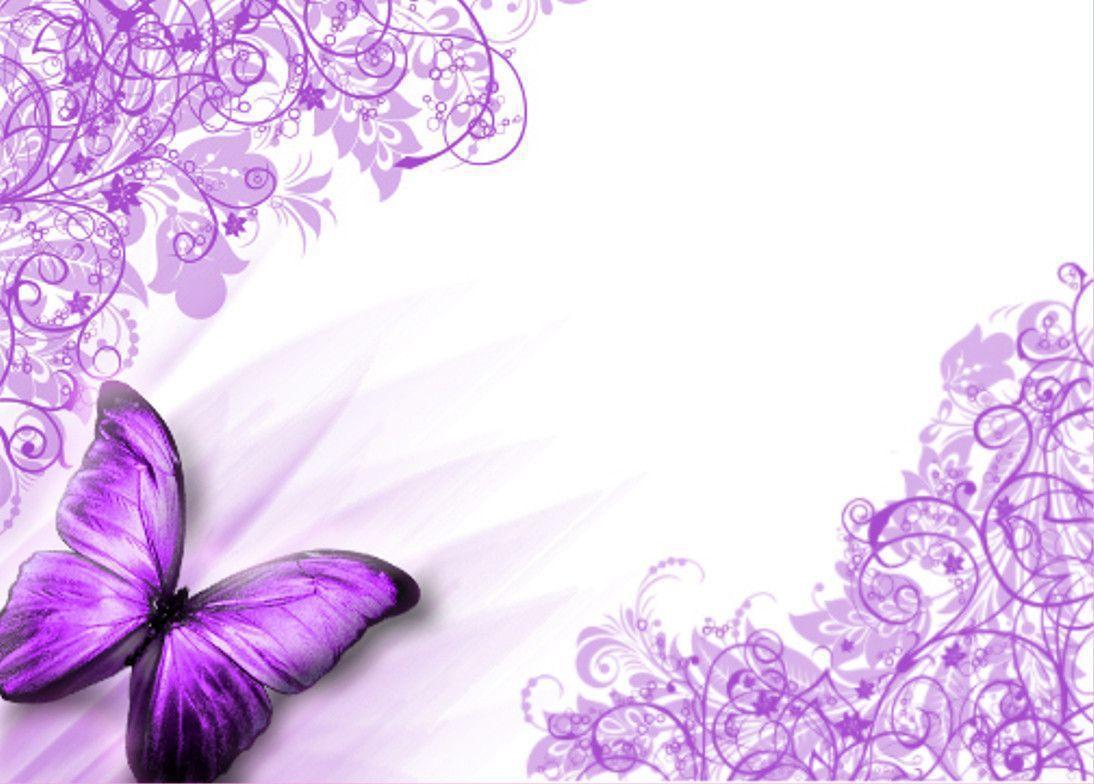 Purple Butterfly Wallpapers Top Free Purple Butterfly