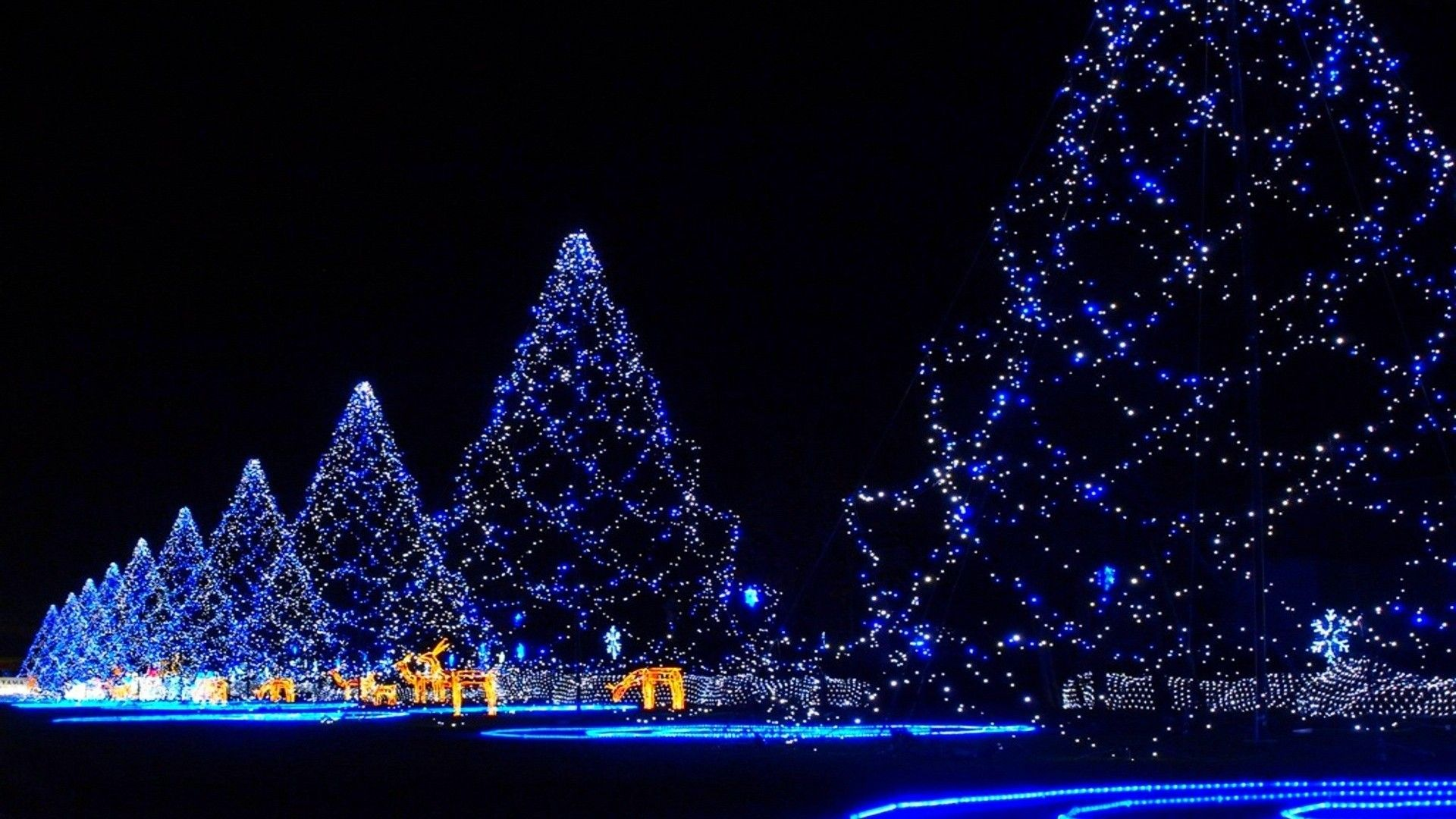 Japanese Winter Lights Wallpapers Top Free Japanese Winter Lights Backgrounds Wallpaperaccess