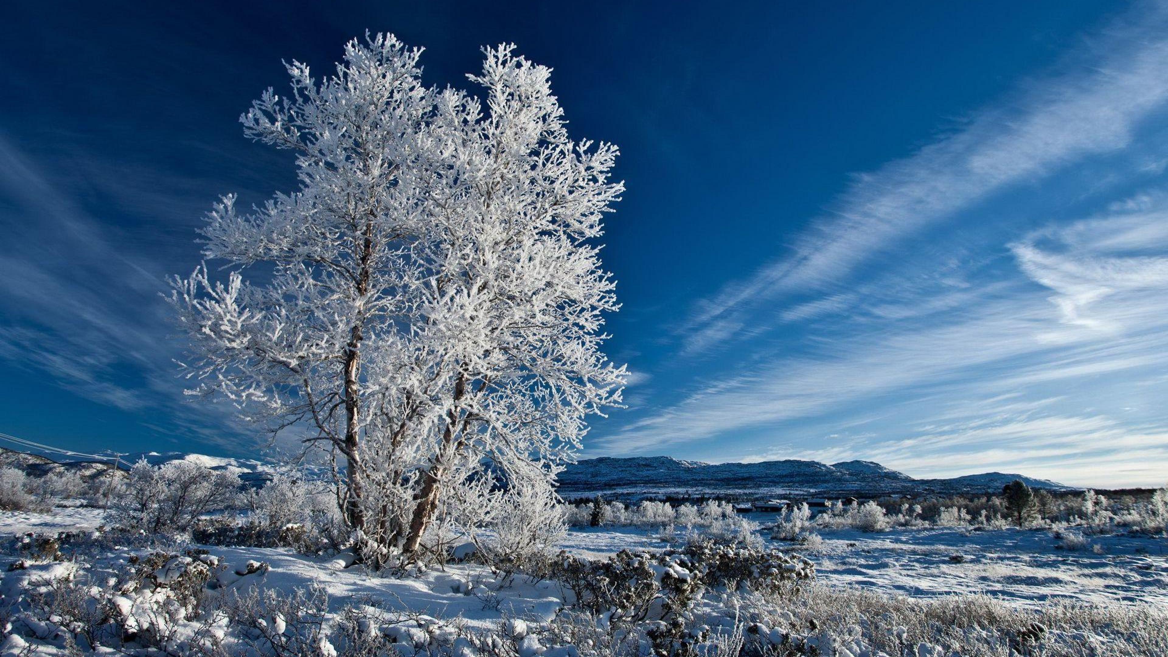 4k 16 9 winter wallpapers top free 4k 16 9 winter - Nature wallpaper hd 16 9 ...