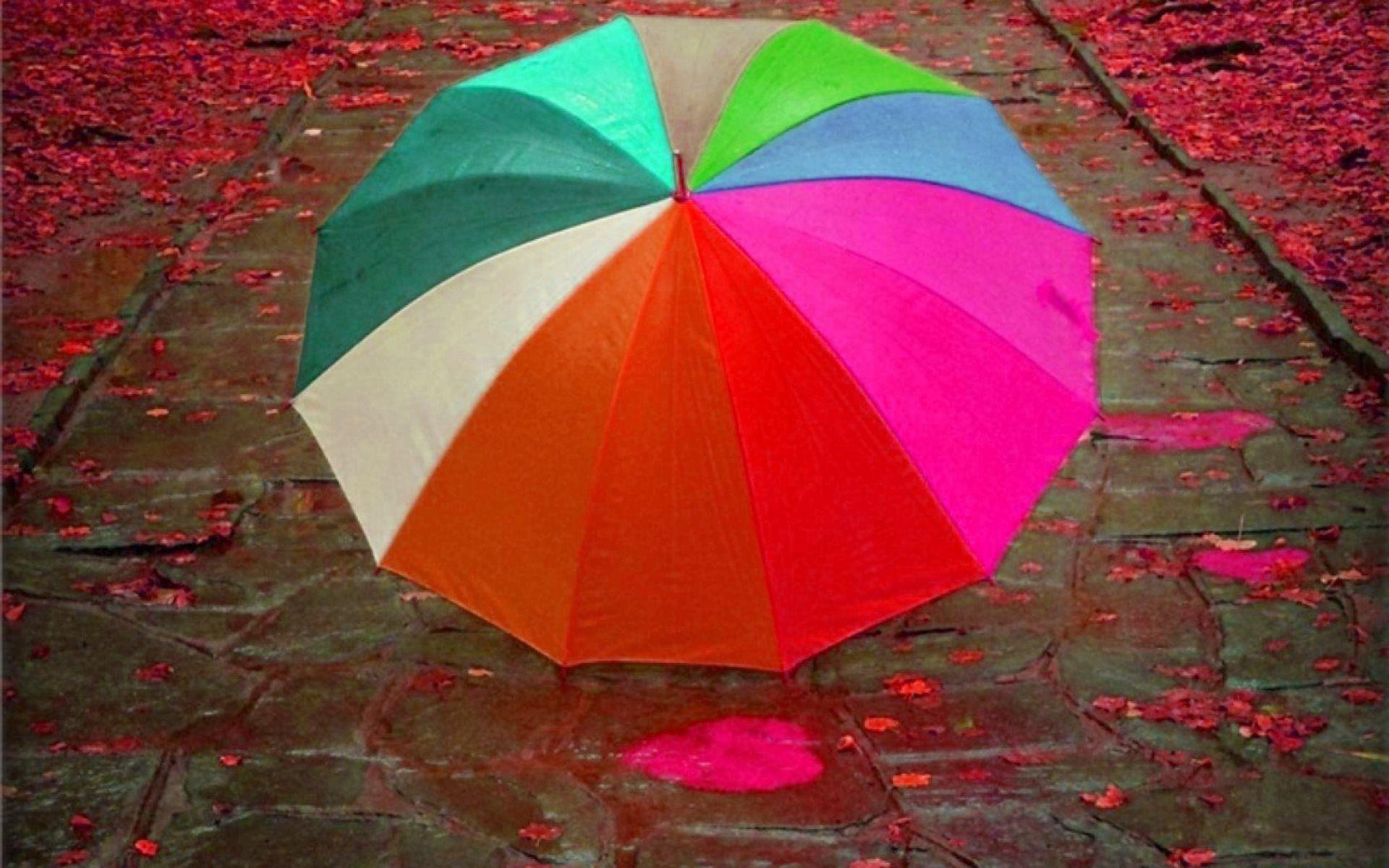 Мокрый зонт обои на рабочий стол находки