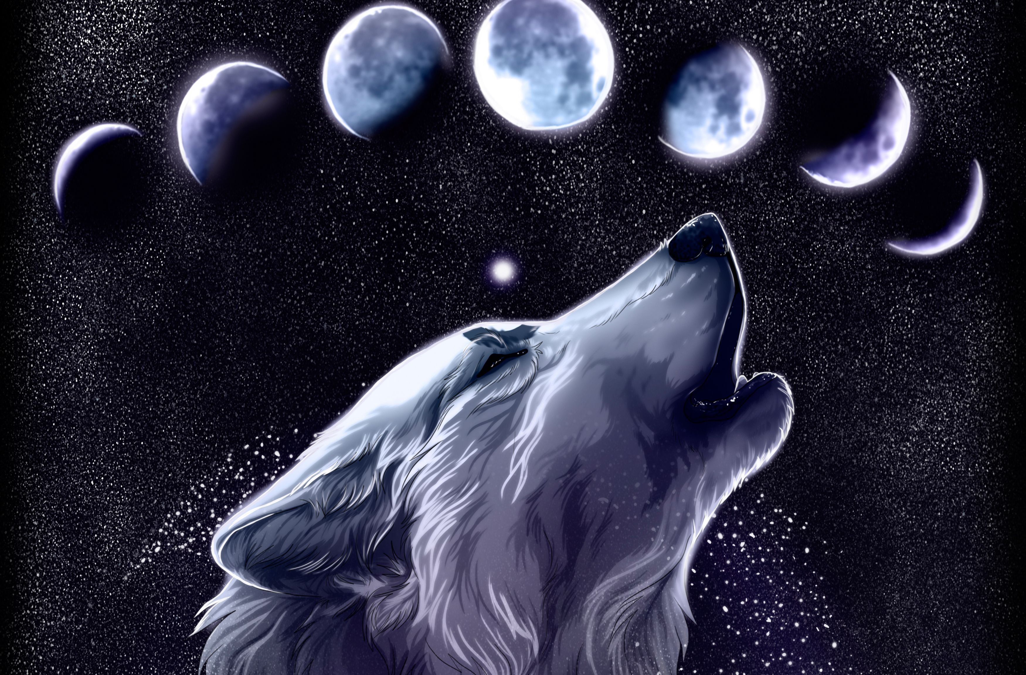 Anime Galaxy Wolf Wallpapers Top Free Anime Galaxy Wolf Backgrounds Wallpaperaccess
