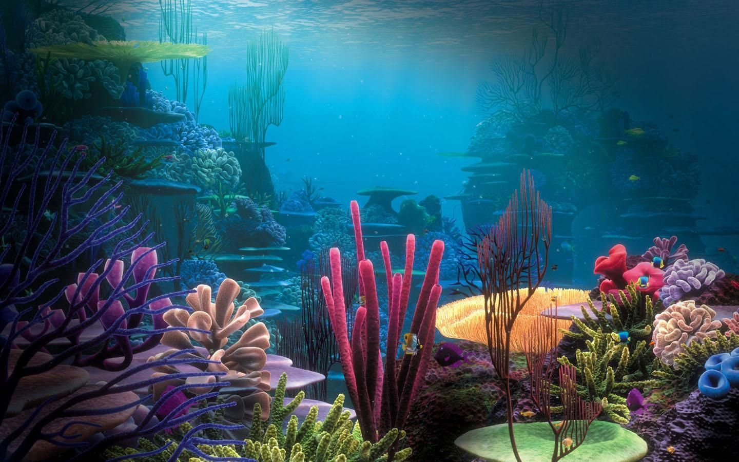 Hd Aquarium Wallpapers Top Free Hd Aquarium Backgrounds Wallpaperaccess