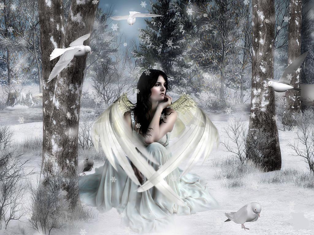 Fairy winter