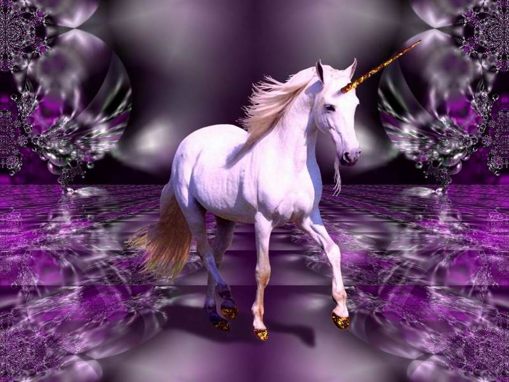 Real Unicorn Wallpapers - Top Free Real Unicorn Backgrounds