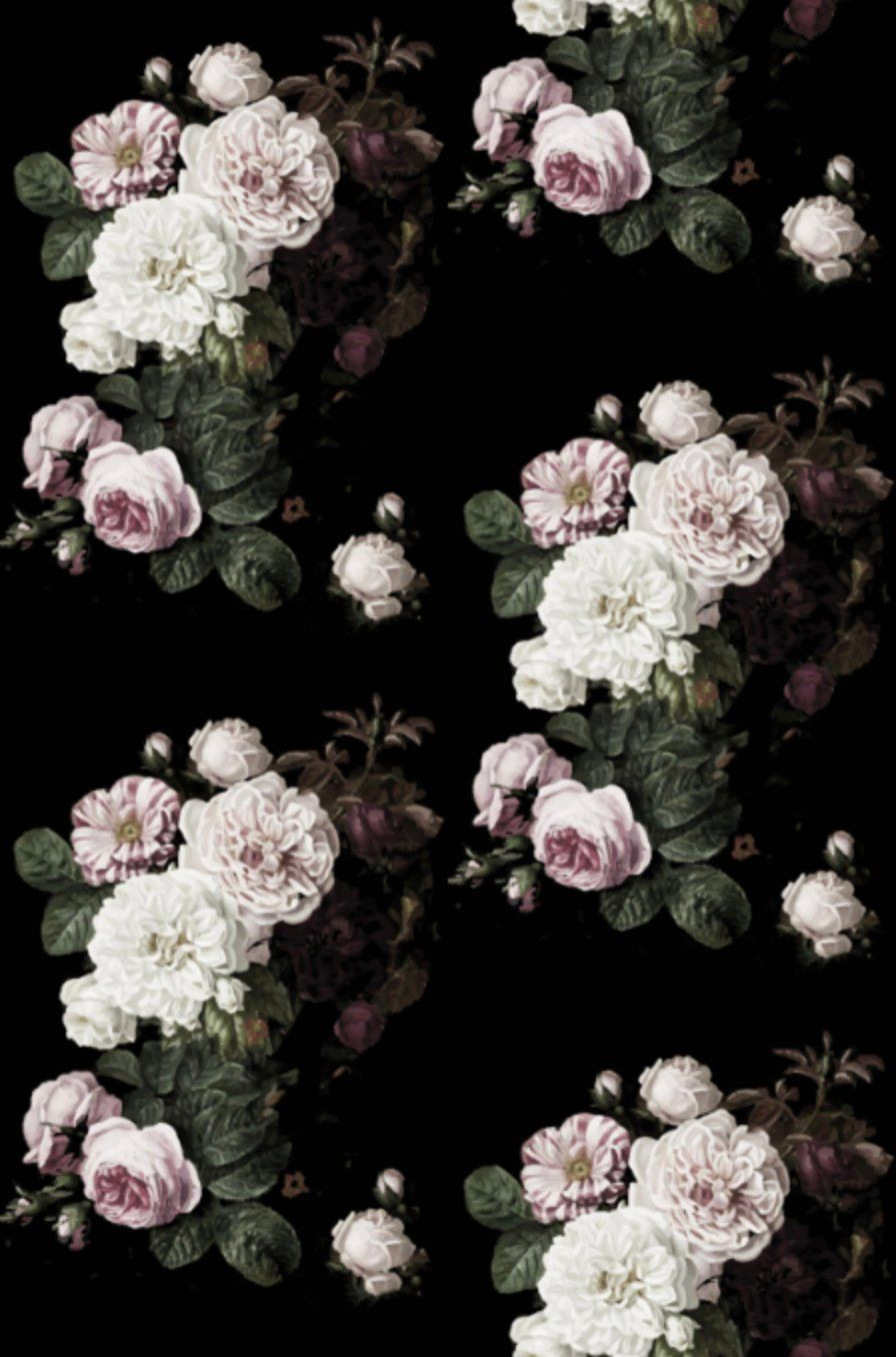 Dark Floral Wallpapers Top Free Dark Floral Backgrounds