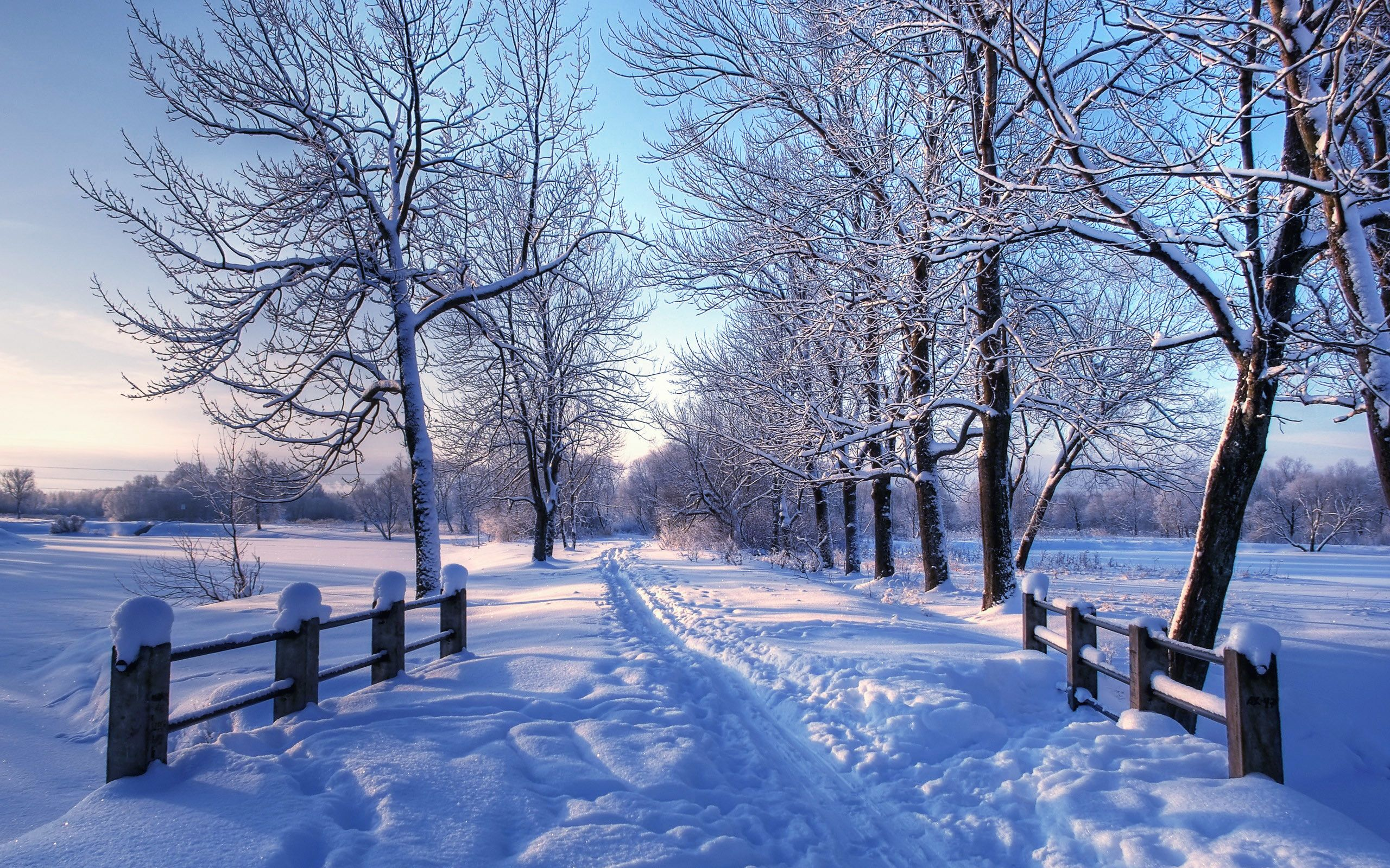 Winter Mac Wallpapers Top Free Winter Mac Backgrounds Wallpaperaccess