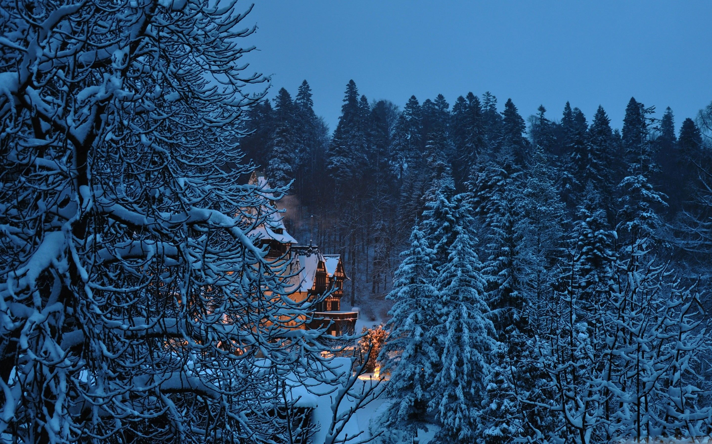 Winter Mac Wallpapers - Top Free Winter ...