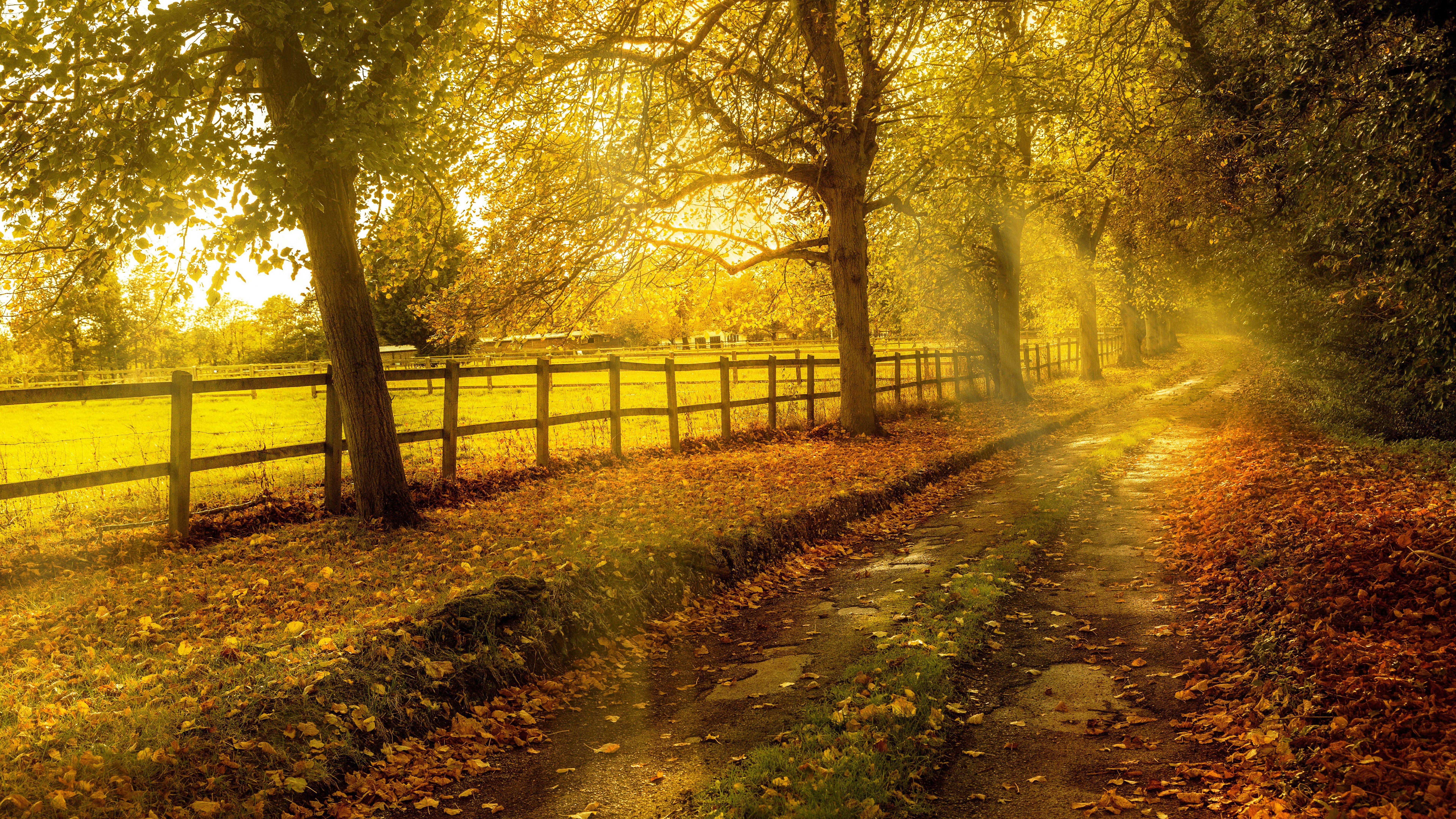 8K Landscape Wallpapers - Top Free 8K Landscape ...