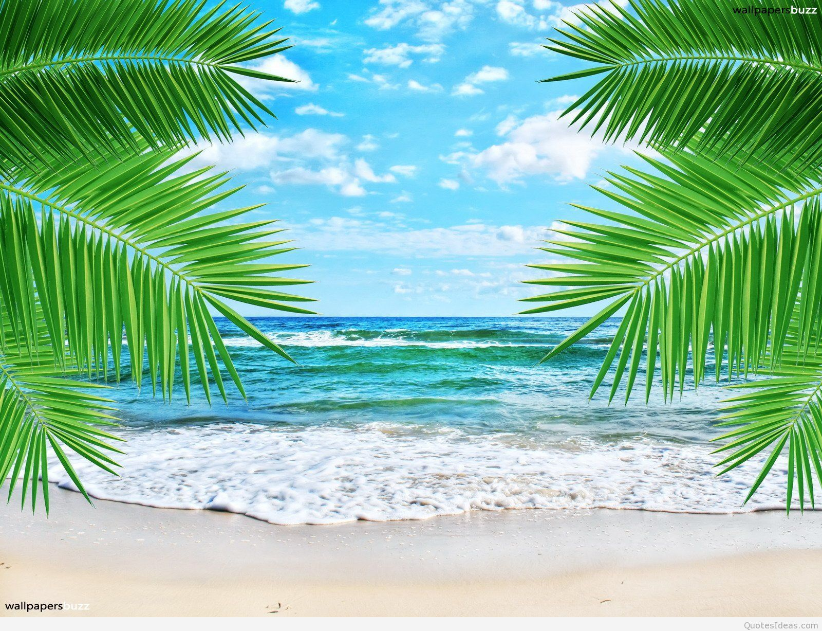Cute Beach Wallpapers Top Free Cute Beach Backgrounds