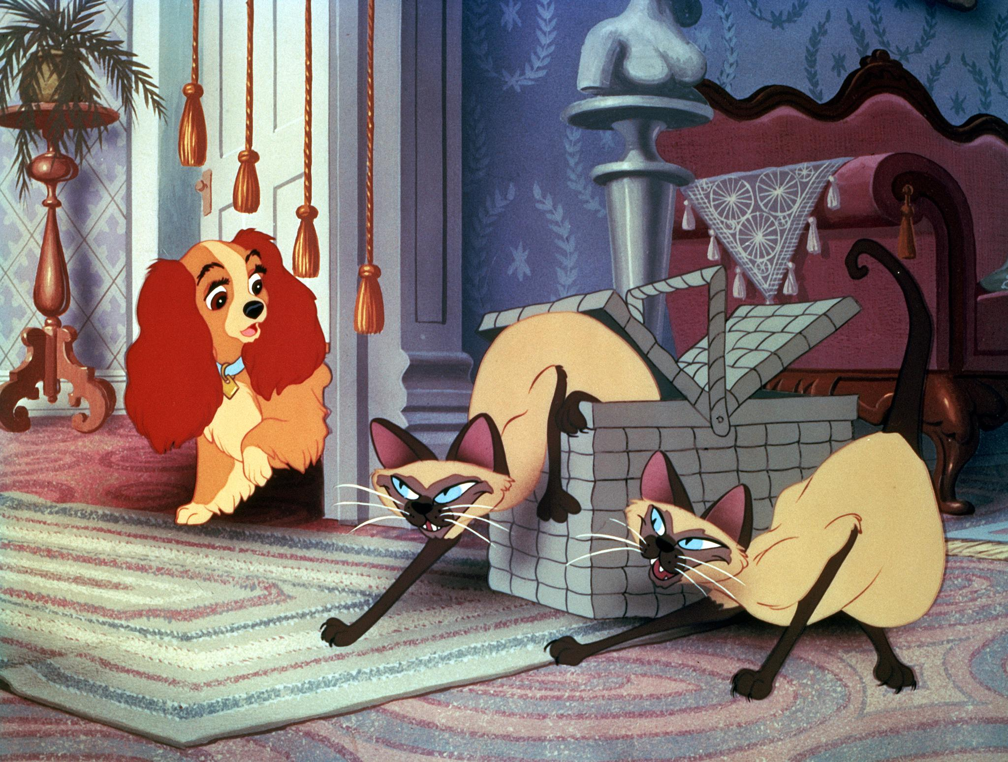 Lady And The Tramp Wallpapers Top Free Lady And The Tramp Backgrounds Wallpaperaccess