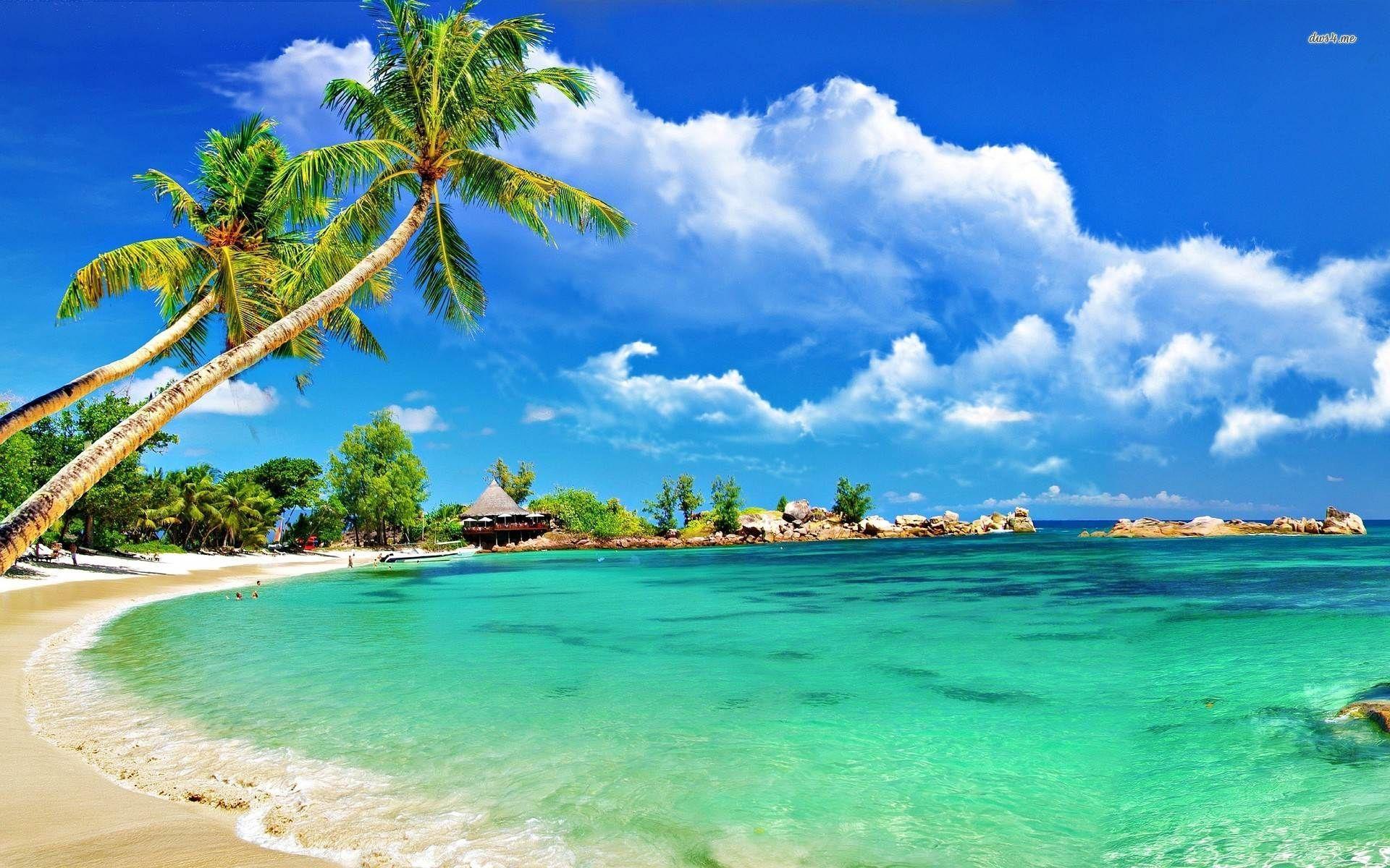 1920x1200 Đảo nhiệt đới Hình nền máy tính để bàn 1999 × 1333 Đảo nhiệt đới.  Hình nền đáng yêu.  Nền bãi biển, Hình nền bãi biển, Bãi biển đảo nhiệt đới