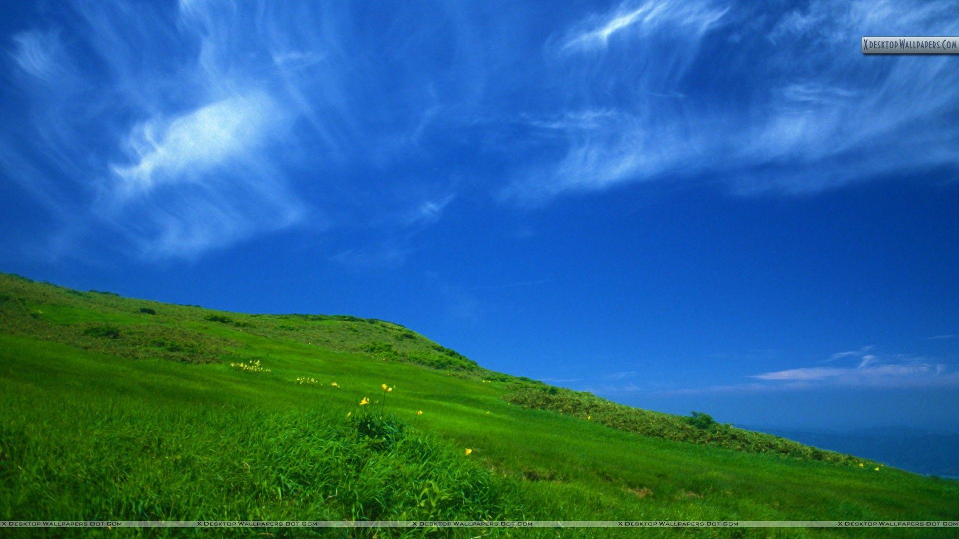 Sunny Desktop Wallpapers Top Free Sunny Desktop