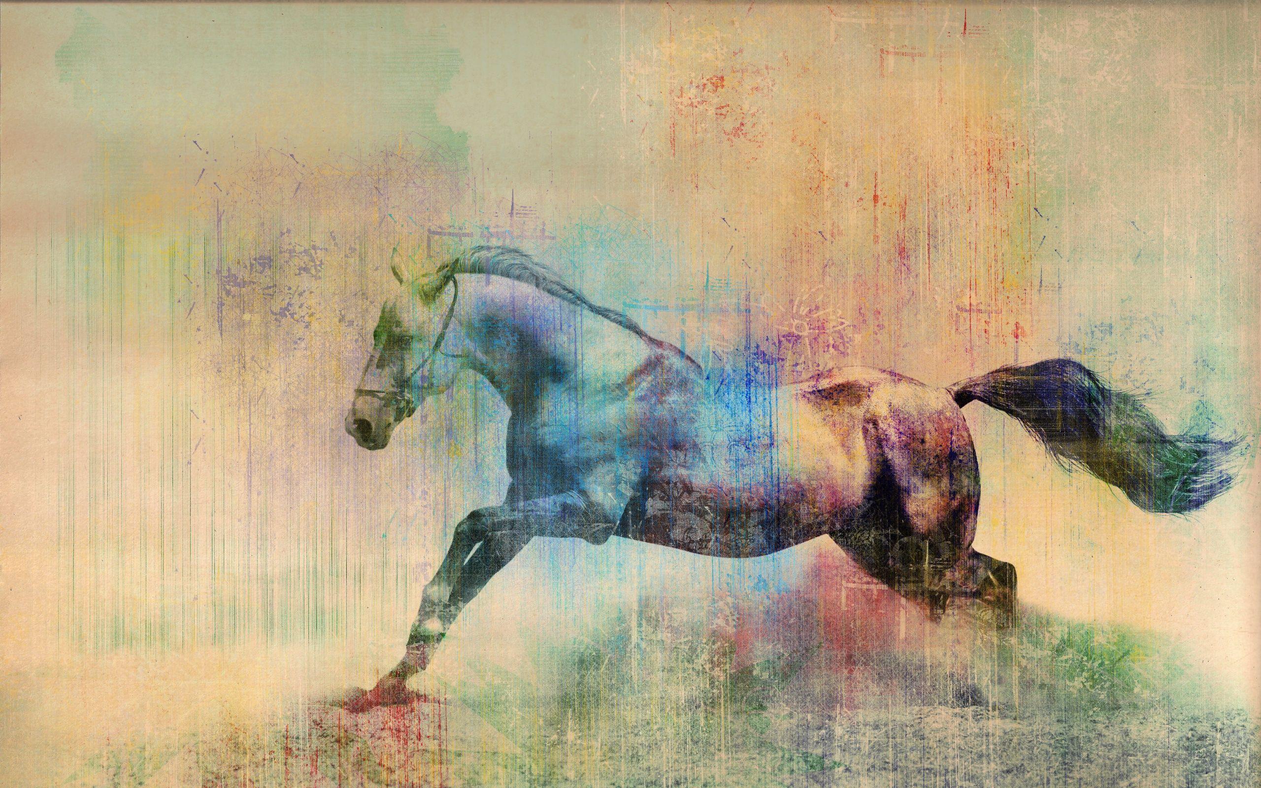 Horse Art Wallpapers Top Free Horse Art Backgrounds