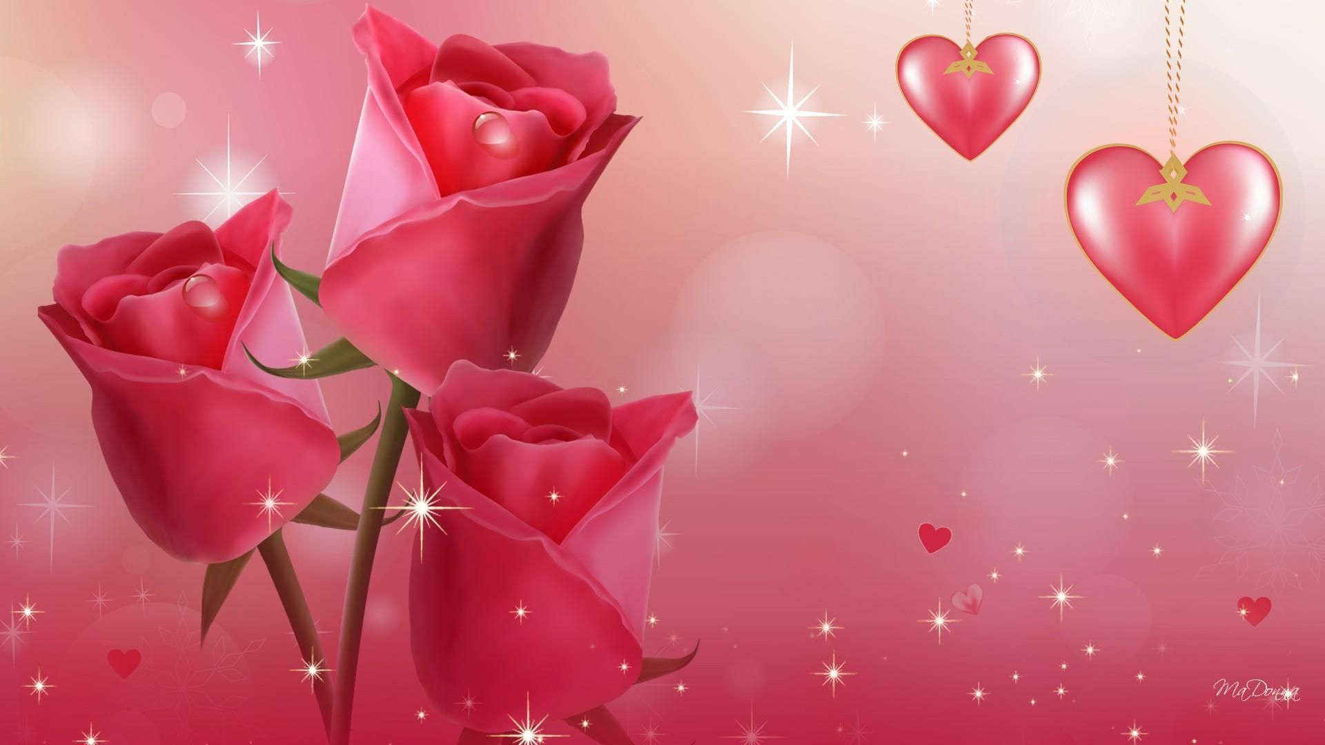 Cute Rose Wallpapers Top Free Cute Rose Backgrounds