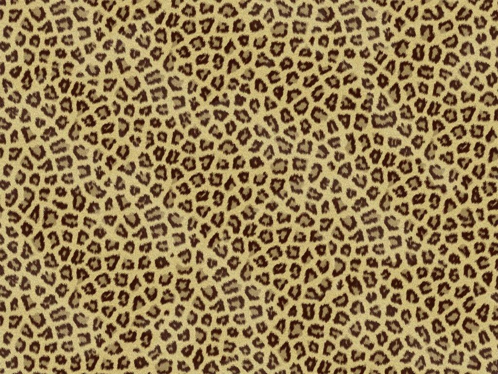 1024x768 Cheetah Print Hình nền cho máy tính xách tay