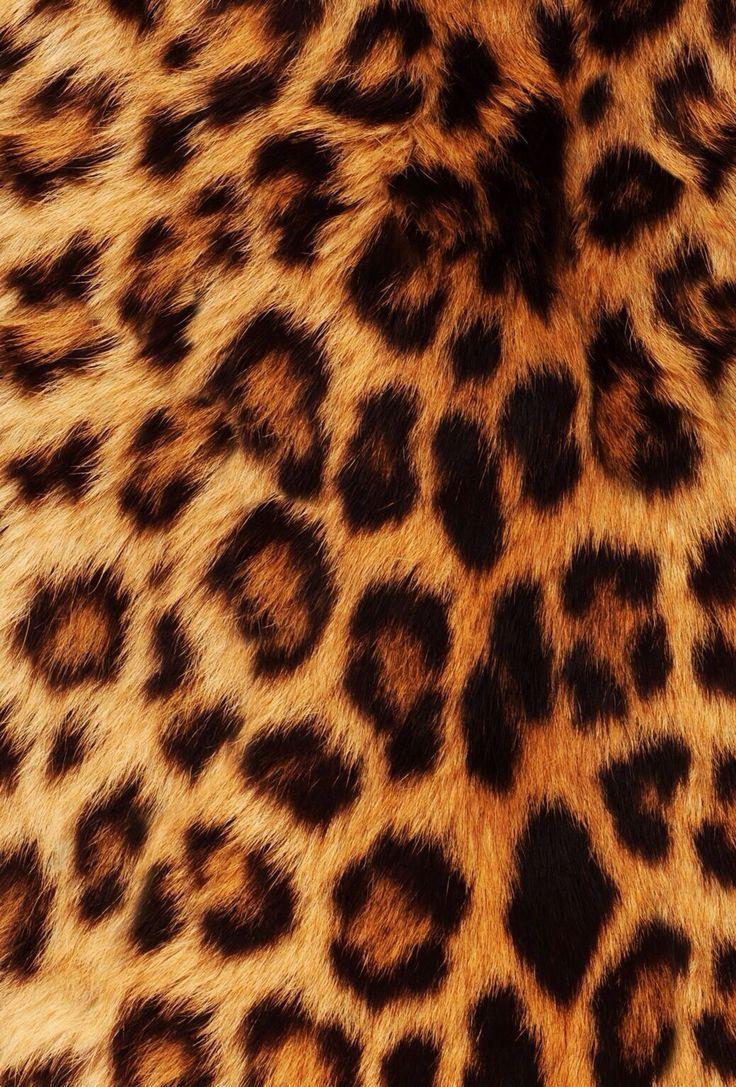 736x1087 Cheetah Print Hình nền iPhone, Hình nền trực tuyến, độ phân giải cao