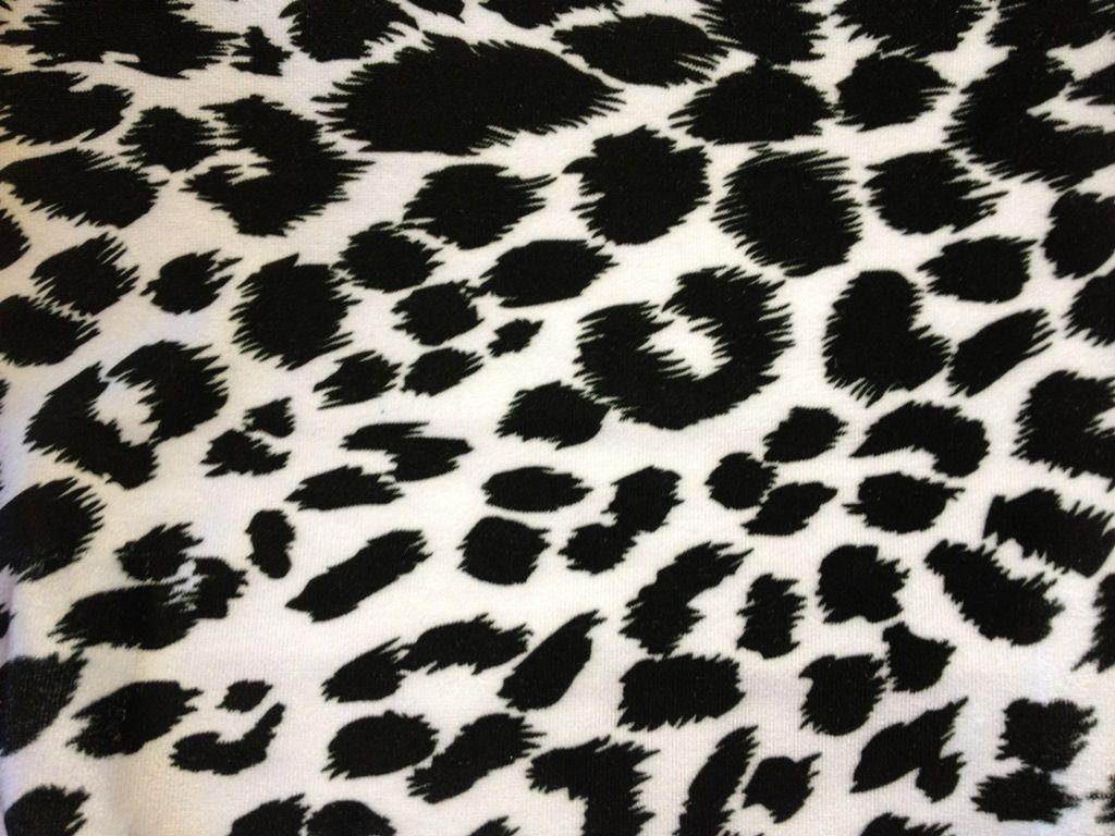 1024x768 Tải xuống 15 Hình nền In Cheetah Miễn phí.  HD miễn phí