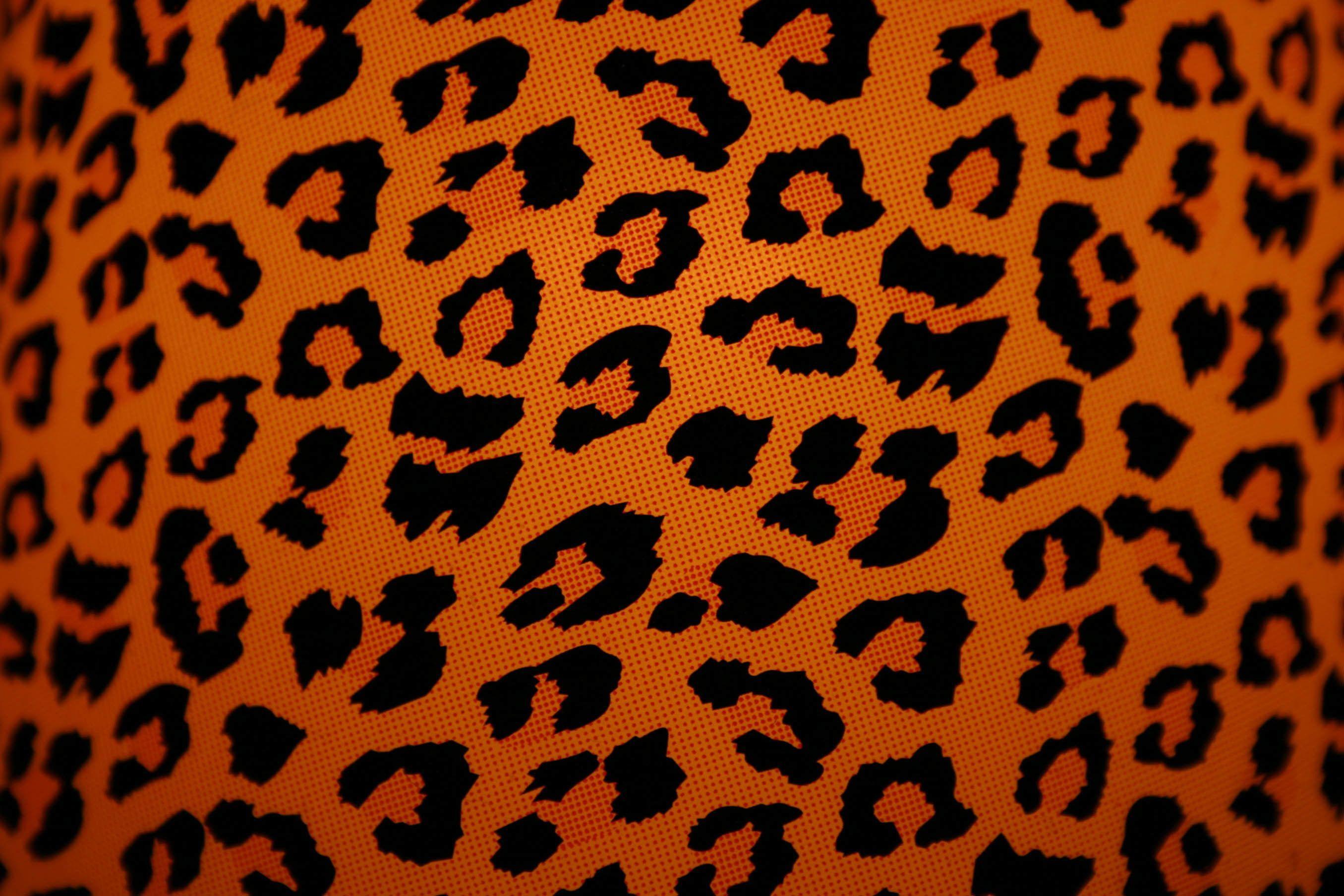 2711x1807 Hình ảnh của Cheetah Print Wallpaper