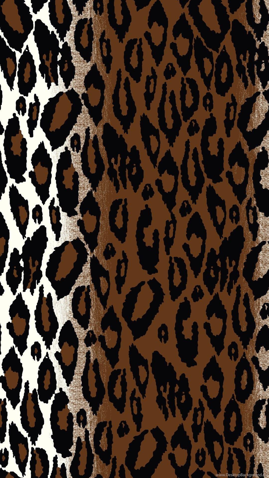 Hình nền in hình Zebra 1080x1920 1920x1080
