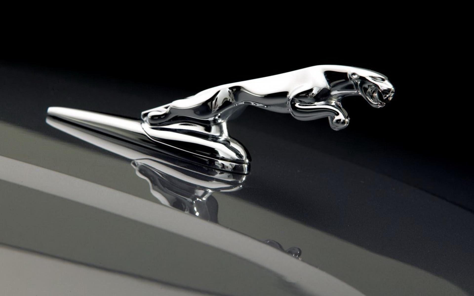 Jaguar car logo hd wallpapers top free jaguar car logo - Car logo wallpapers ...