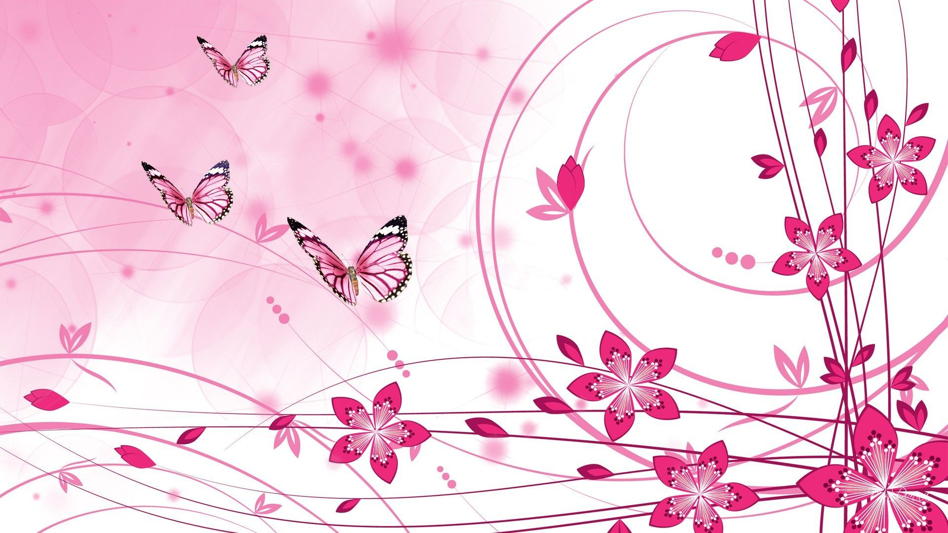 Pink Color Wallpapers   Top Free Pink Color Backgrounds ...