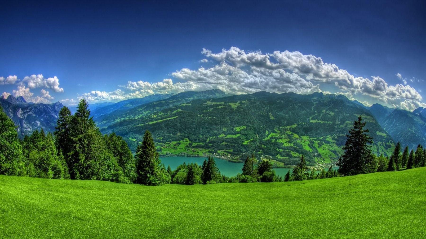 Grassland Wallpapers Top Free Grassland Backgrounds