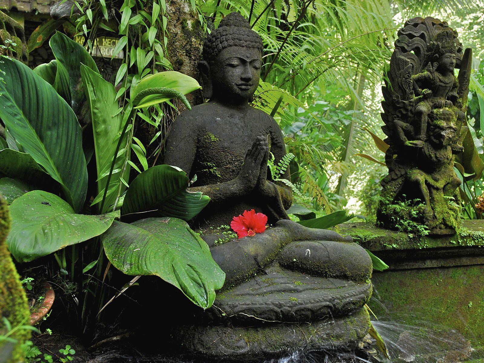 Buddha Zen Garden Wallpapers Top Free Buddha Zen Garden Backgrounds Wallpaperaccess