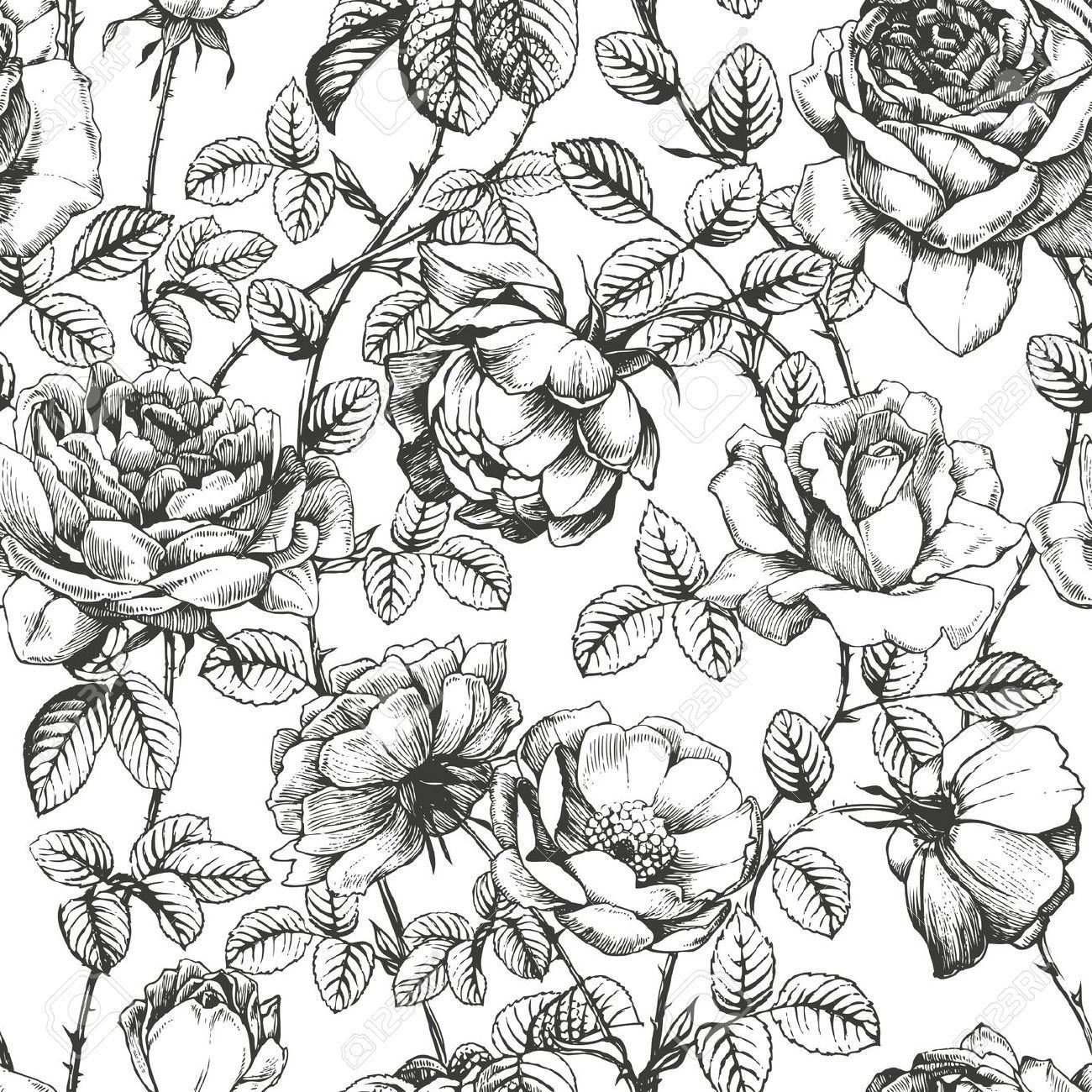 Black And White Vintage Flower Wallpapers Top Free Black And