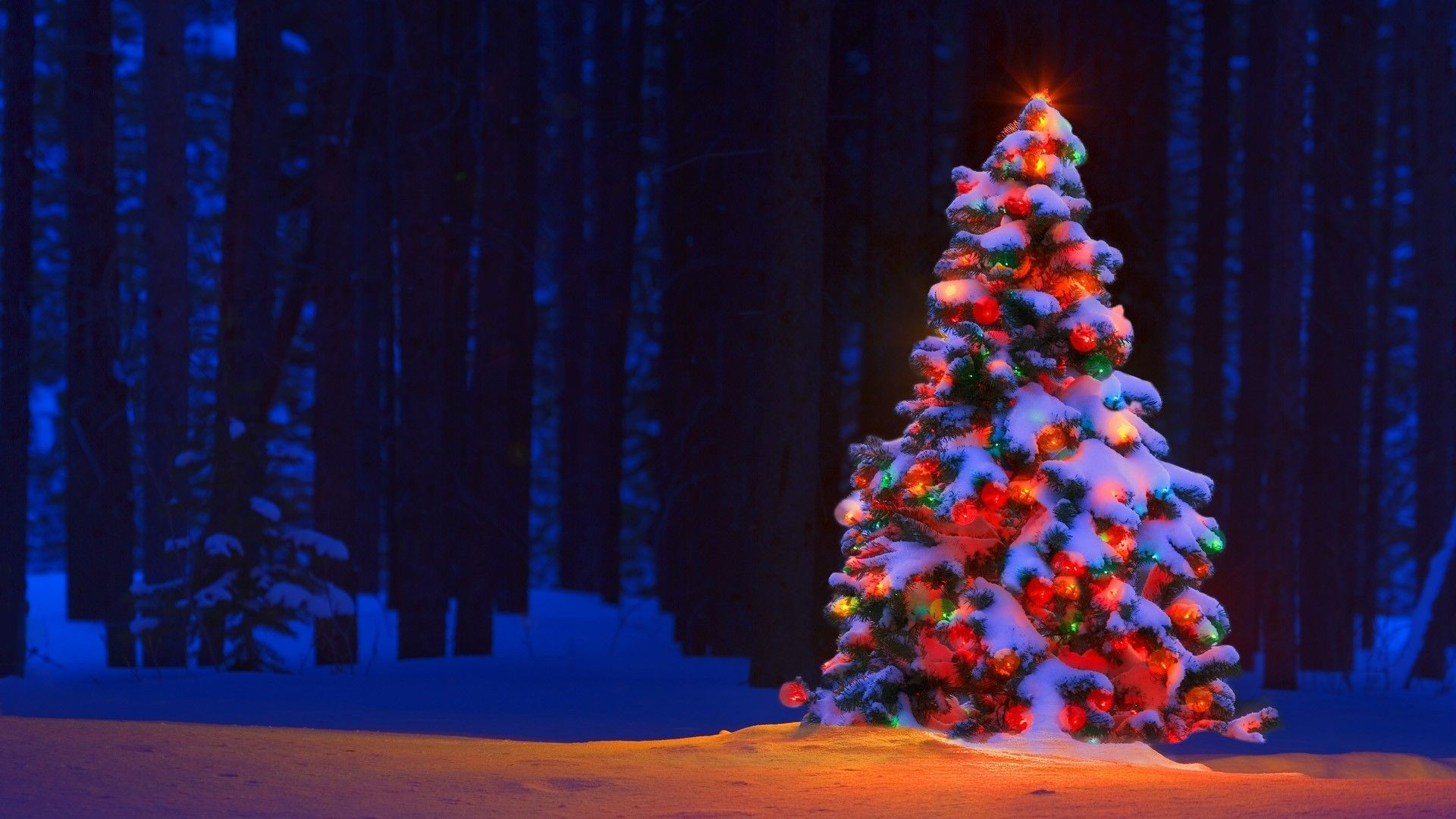 Christmas Tree Desktop Wallpapers Top Free Christmas Tree Desktop Backgrounds Wallpaperaccess