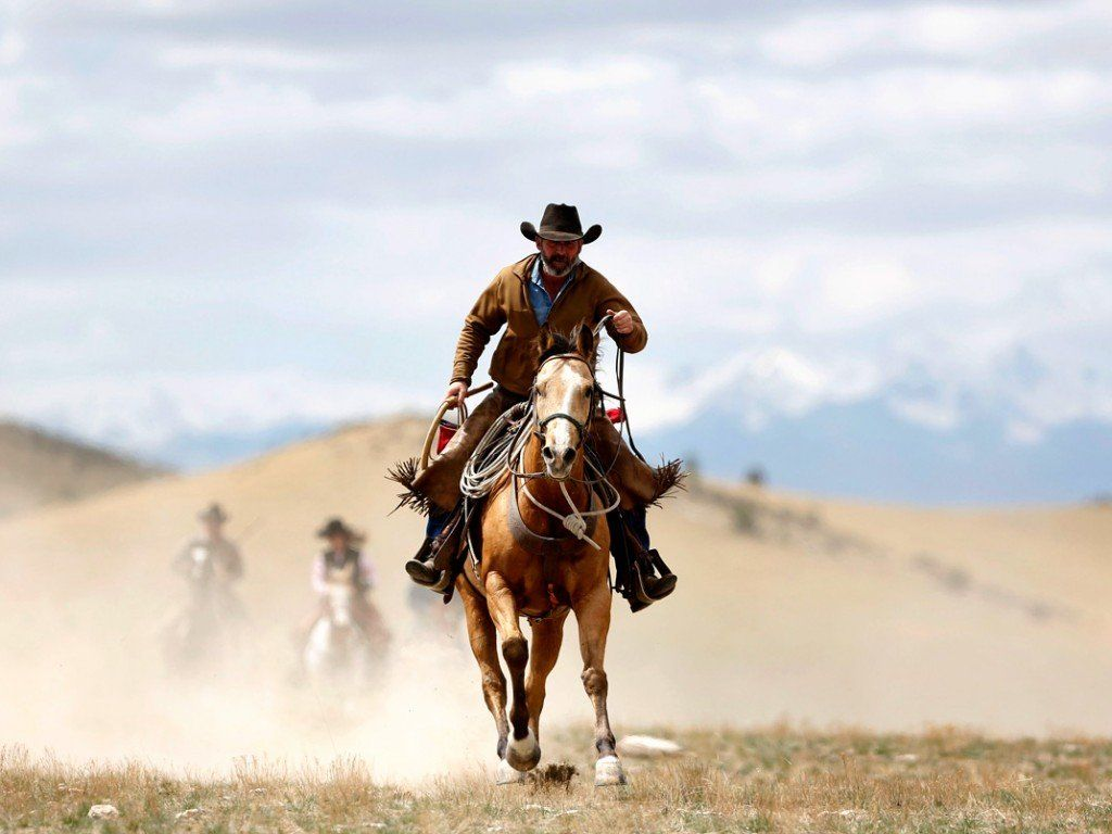 Cowboy Horse Wallpapers Top Free Cowboy Horse Backgrounds Wallpaperaccess