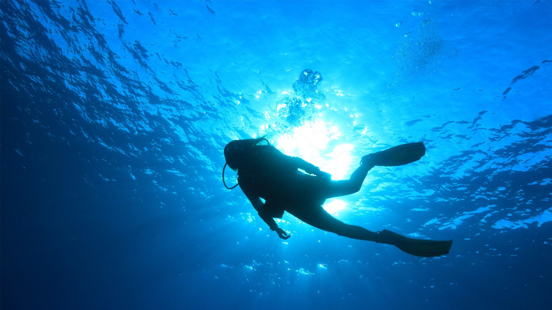 Scuba Diving Wallpapers Top Free Scuba Diving Backgrounds Wallpaperaccess