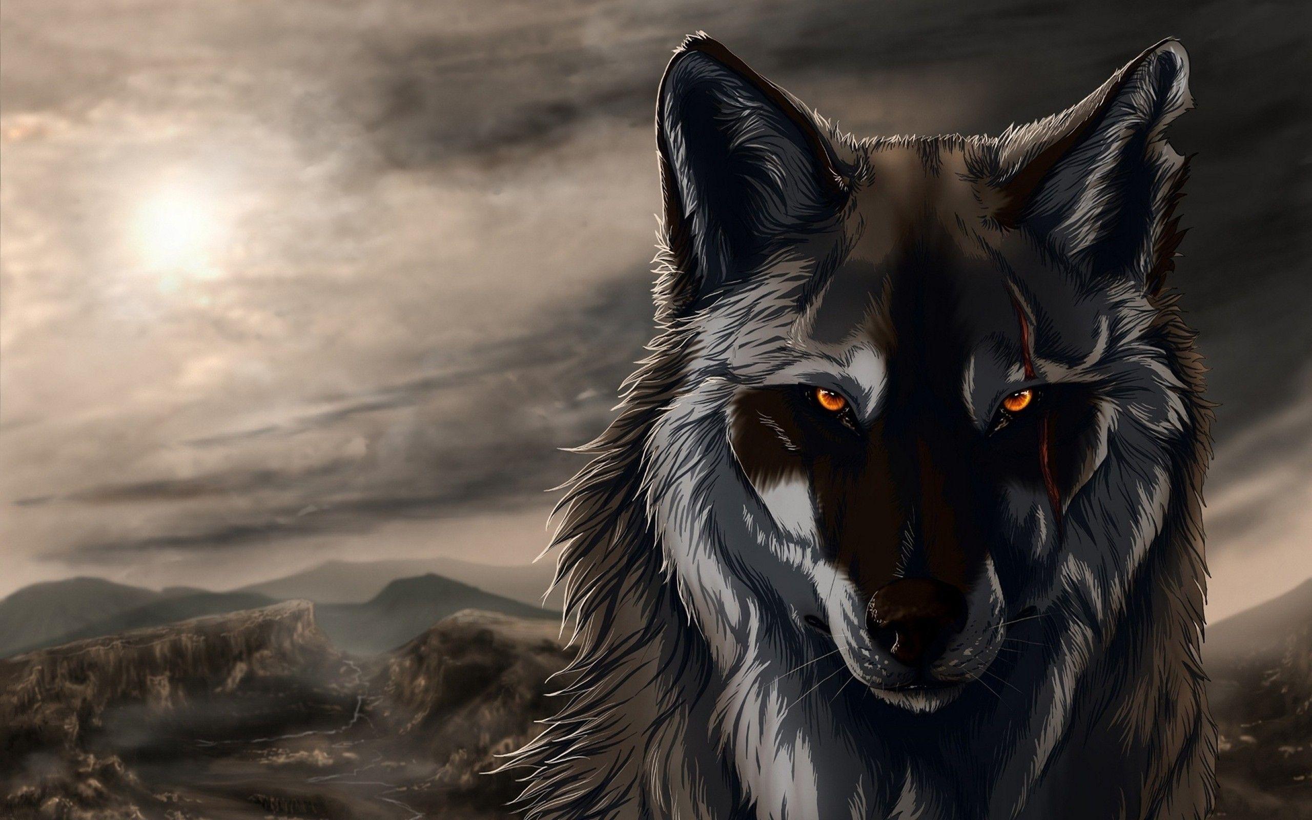 Hình nền và hình nền HD 2560x1600 Wolf