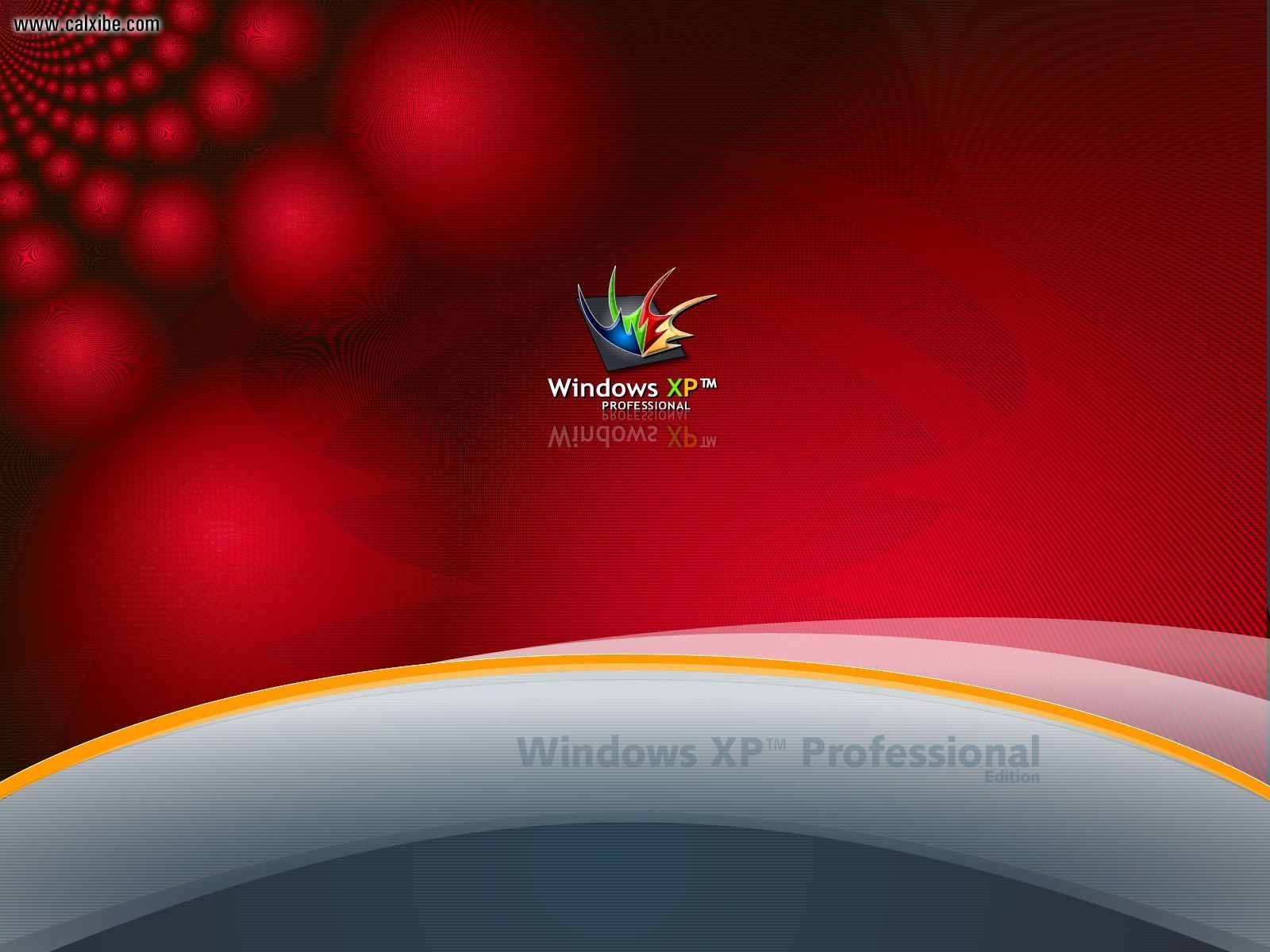 download windows xp professional