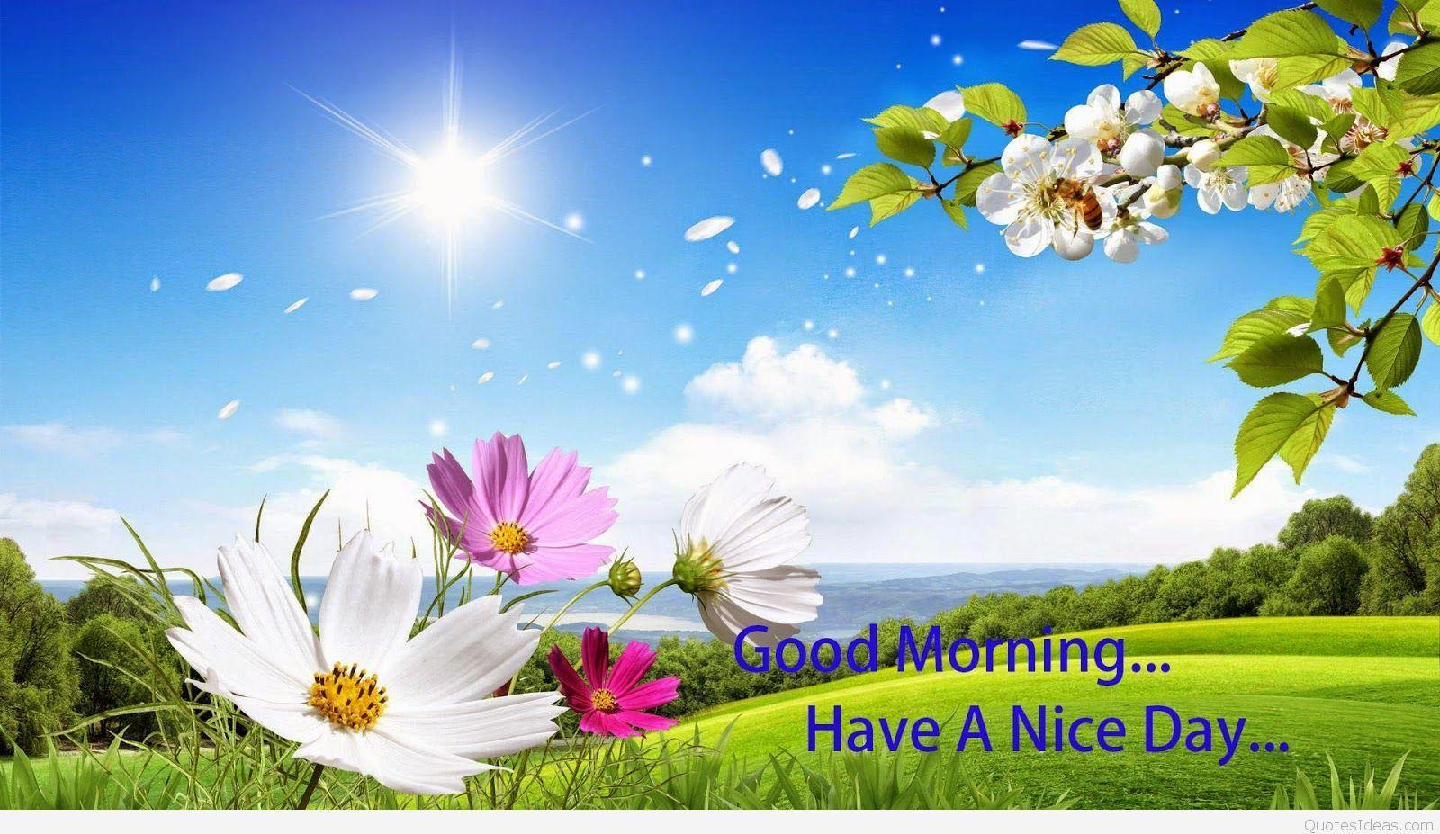 1600x927 Hình nền đẹp Good Morning quote