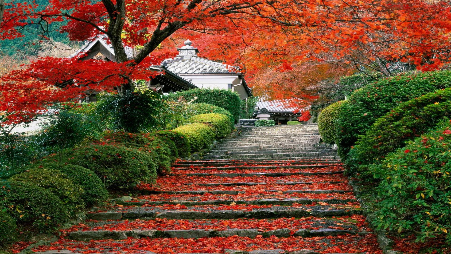 Japan Landscape Wallpapers - Top Free