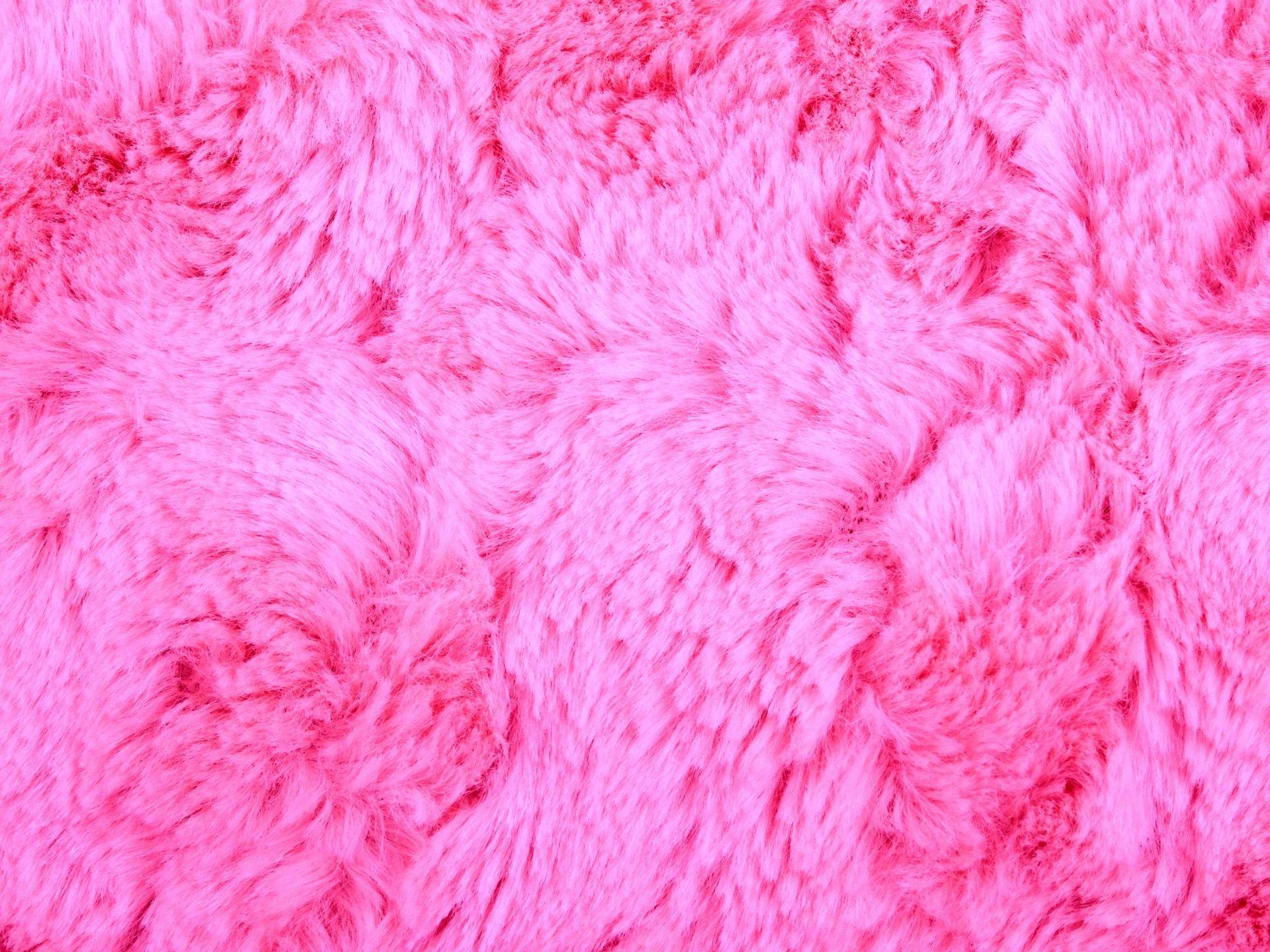 Fur Wallpapers Top Free Fur Backgrounds Wallpaperaccess